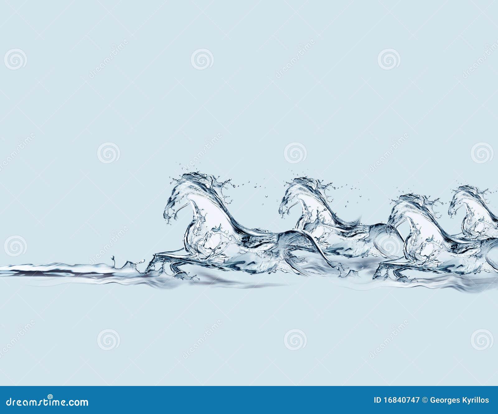 Galoper de chevaux de l eau