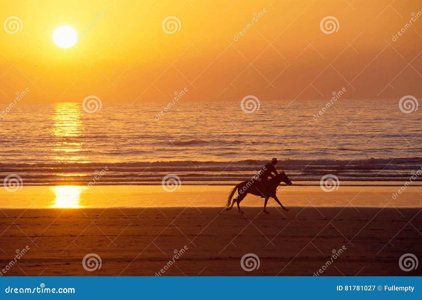 galoppierendes pferd und reiter bei sonnenuntergang auf sand setzen auf den strand stockbild. Black Bedroom Furniture Sets. Home Design Ideas