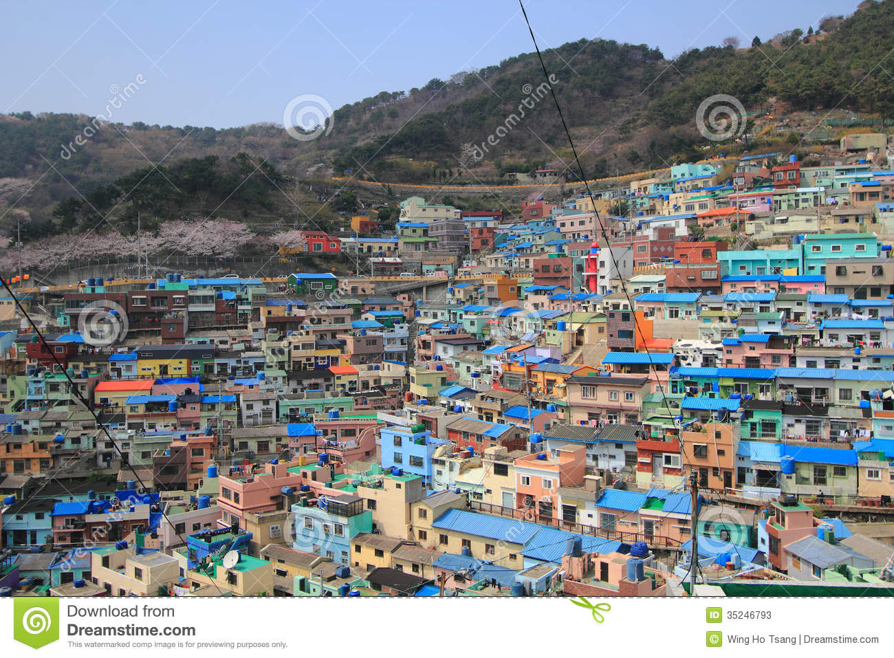 Busan South Korea  city pictures gallery : ... layers along the mountain ridge in busan south korea this poor village