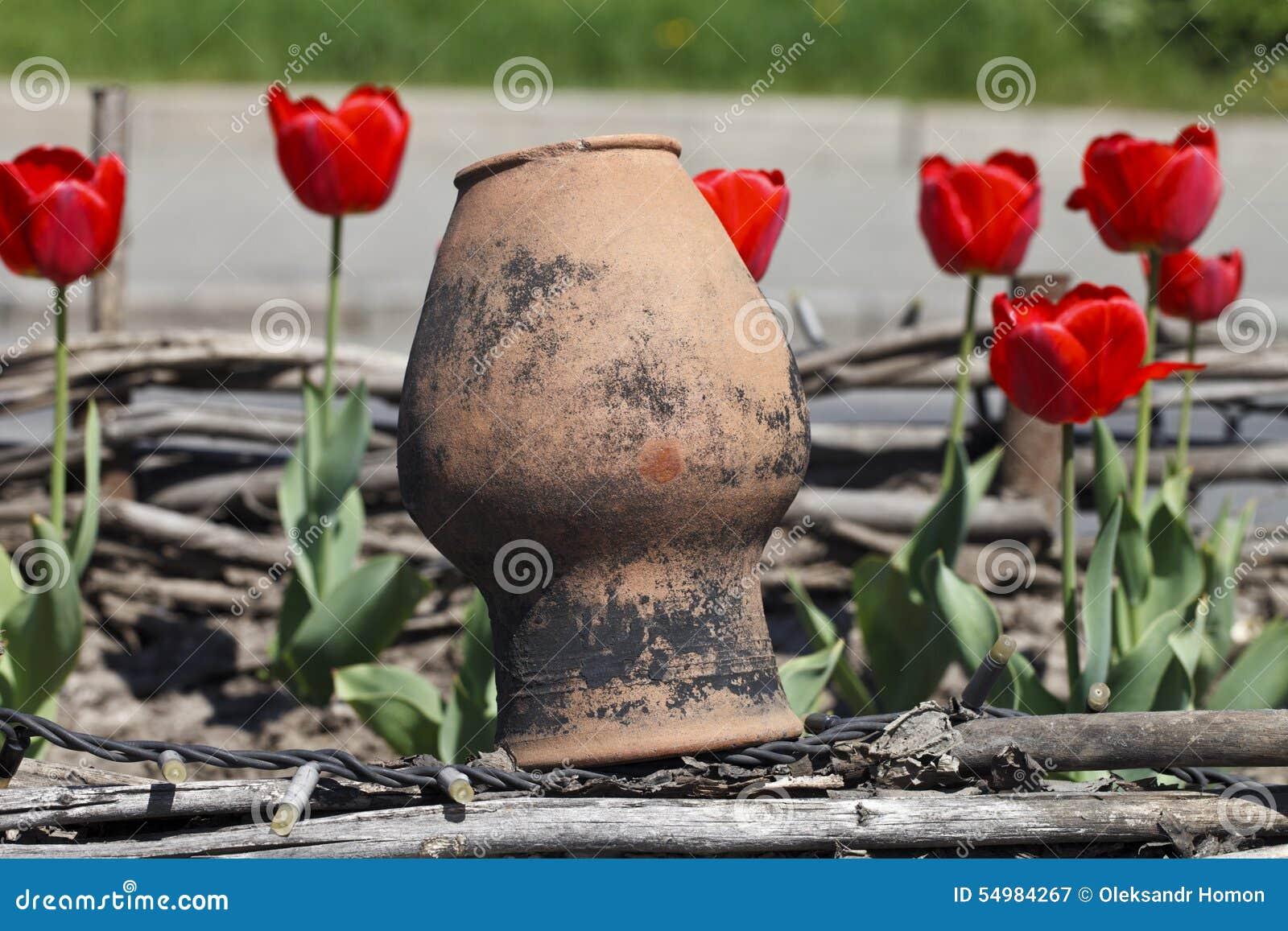 Gamla leratillbringare och tulpan