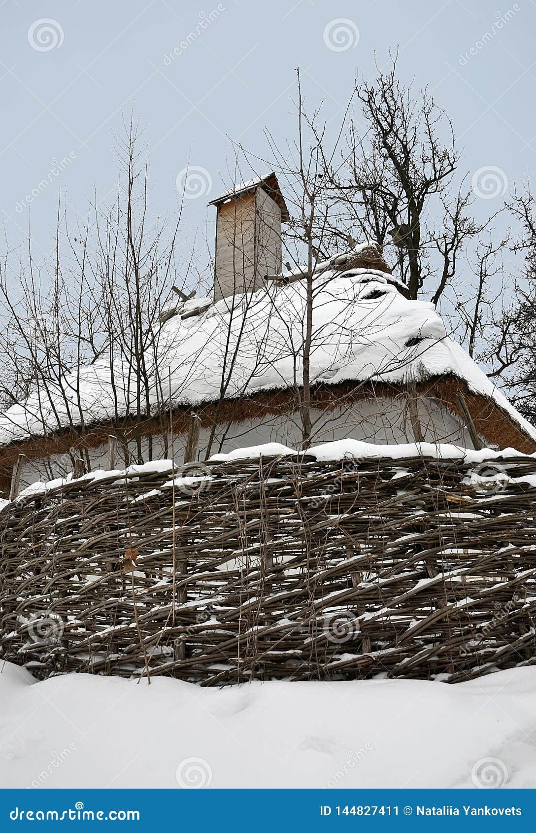 Gamla tr?hus under ett halmt?ckt tak som t?ckas med sn?- och vedtravest?llningen n?ra gamla tr?d