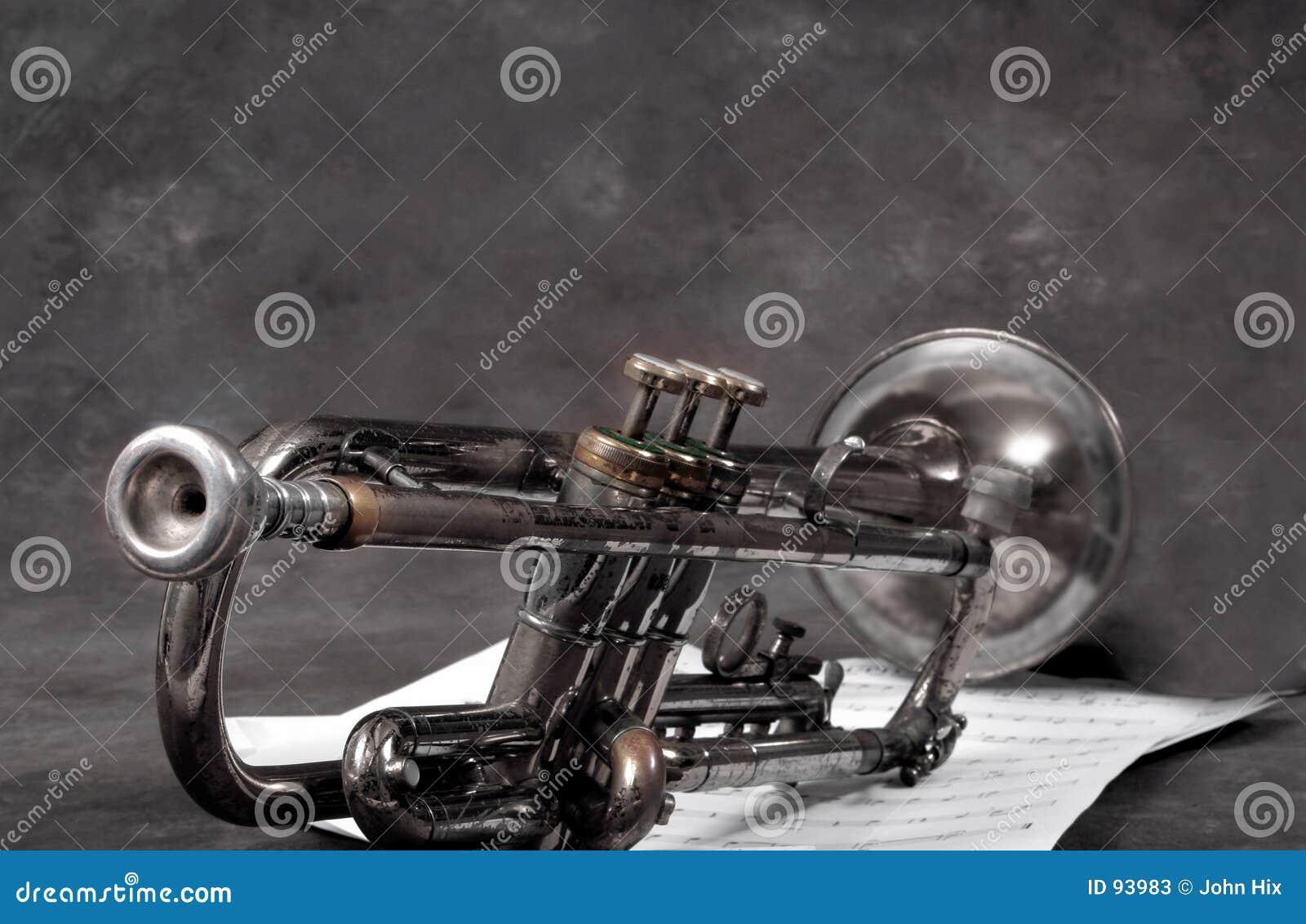 Gammal horn