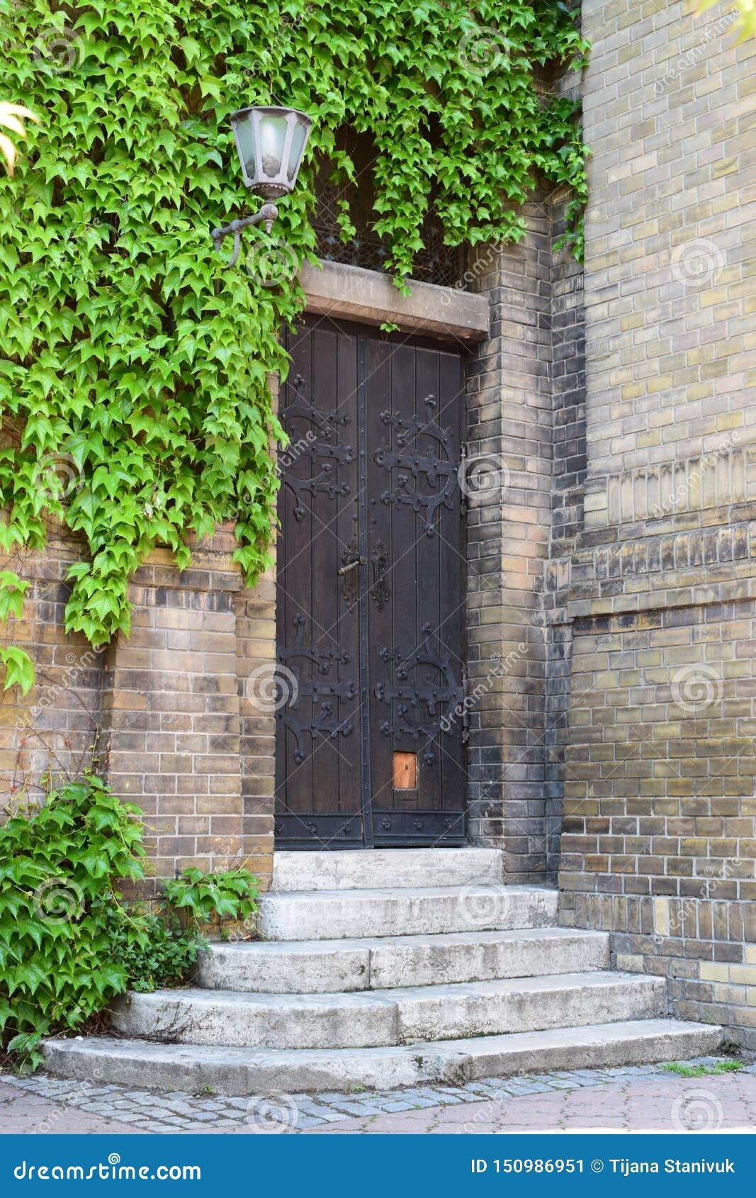 Gammal kraftig dörr - Novi Sad