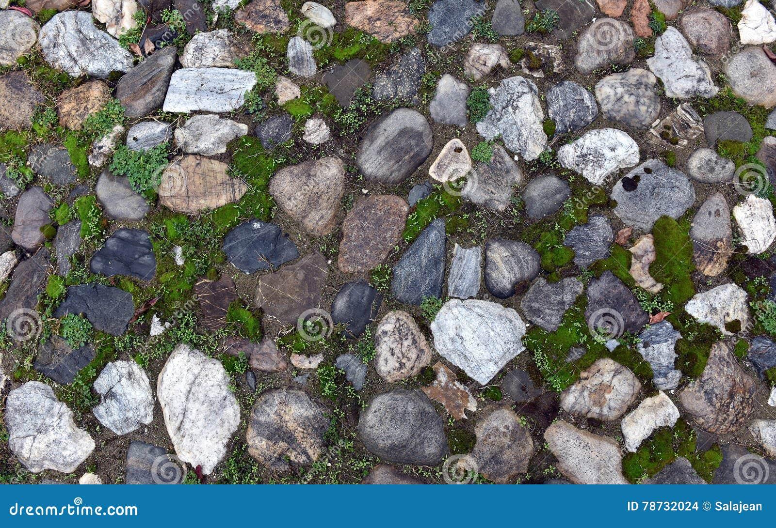 Gammal kullerstenbakgrund med gräs