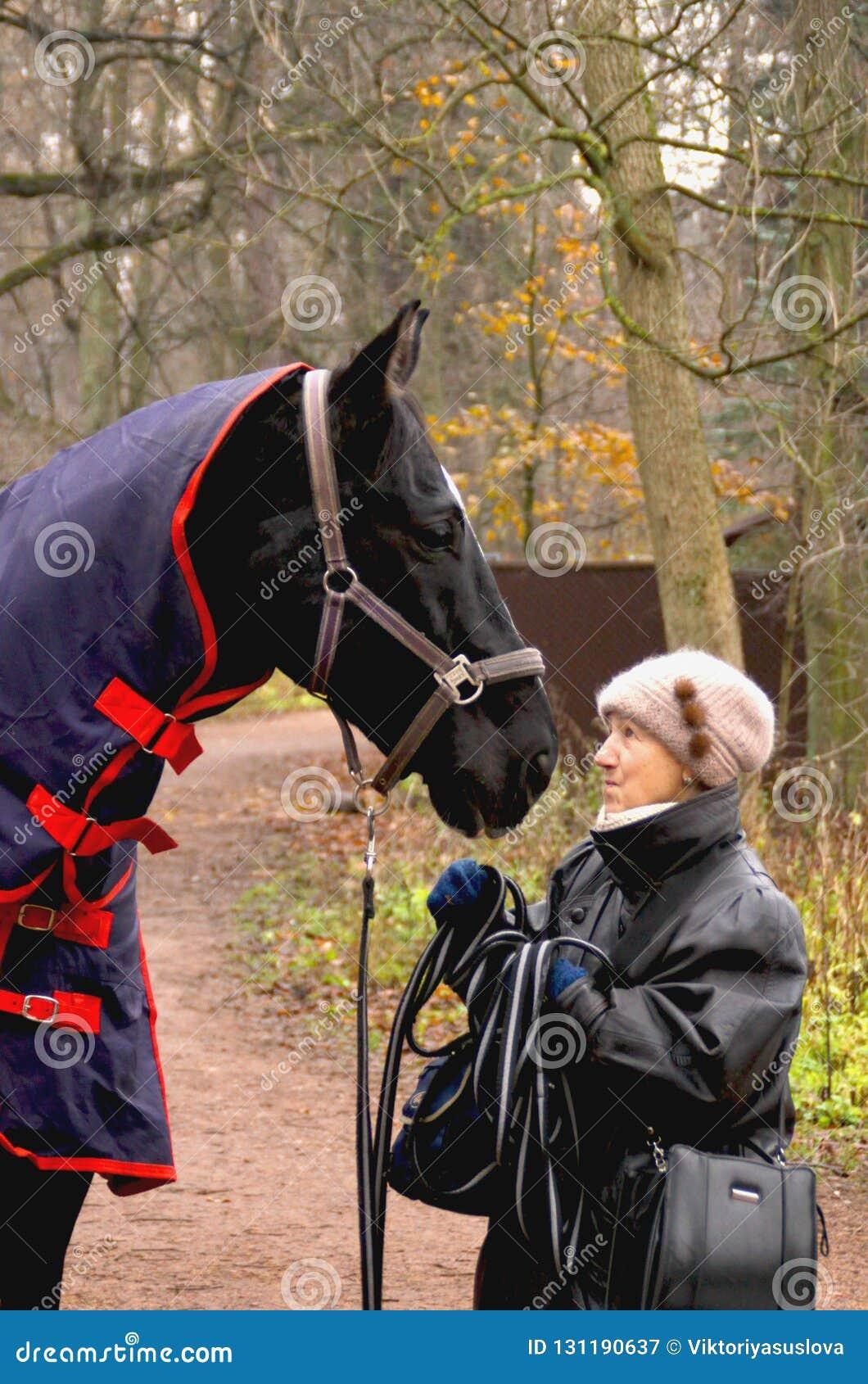 Gammal kvinna som talar till hästen