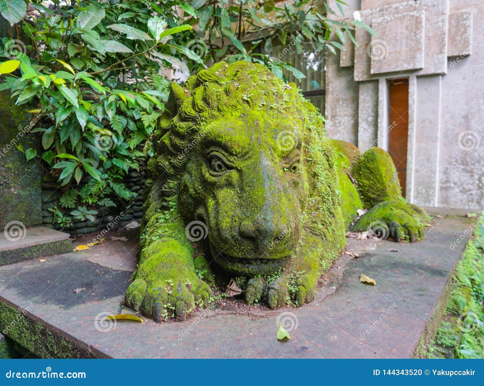 Gammal lejonskulptur som täckas av grön mossa i den Ubud apaskogen, Bali, Indonesien