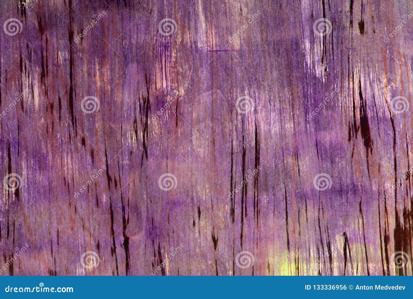Gammal sjaskig tonad naturlig träpaneltextur - gullig abstrakt fotobakgrund