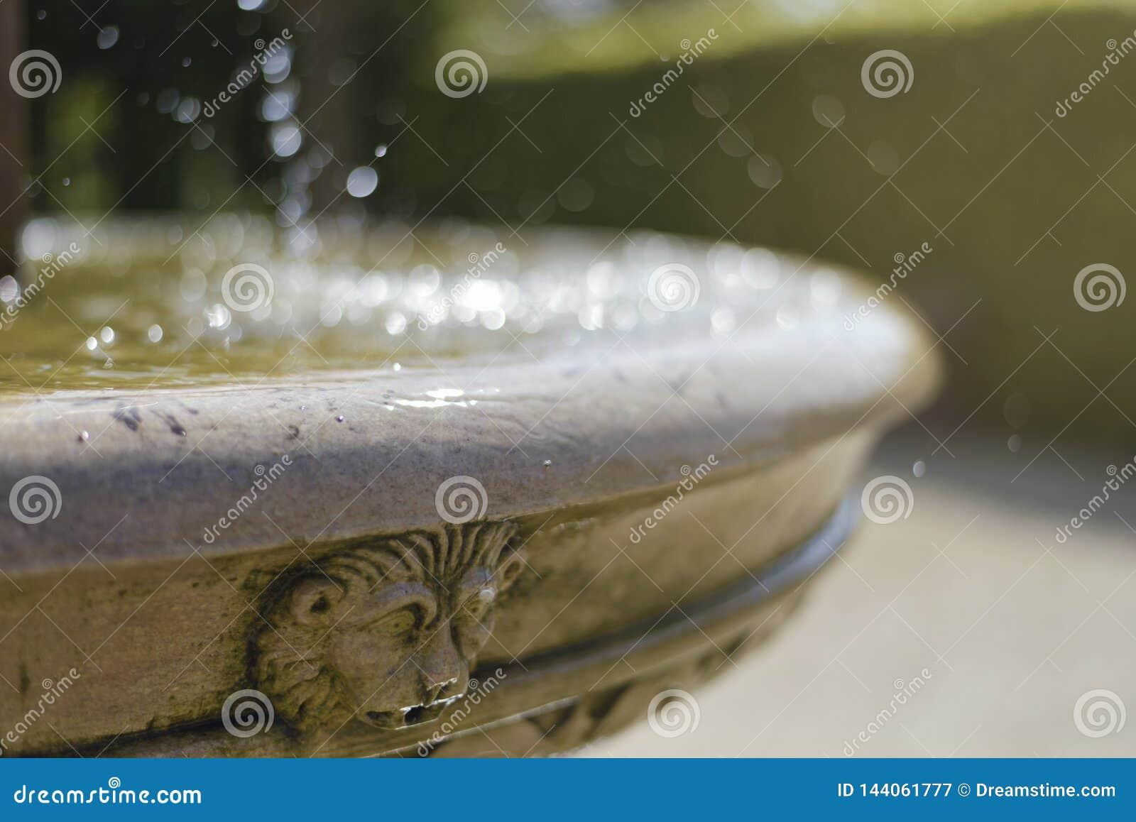 Gammal springbrunn med lejonhuvudet varm sommar för dag den fryste exponeringen betyder plaska vatten för rörelse