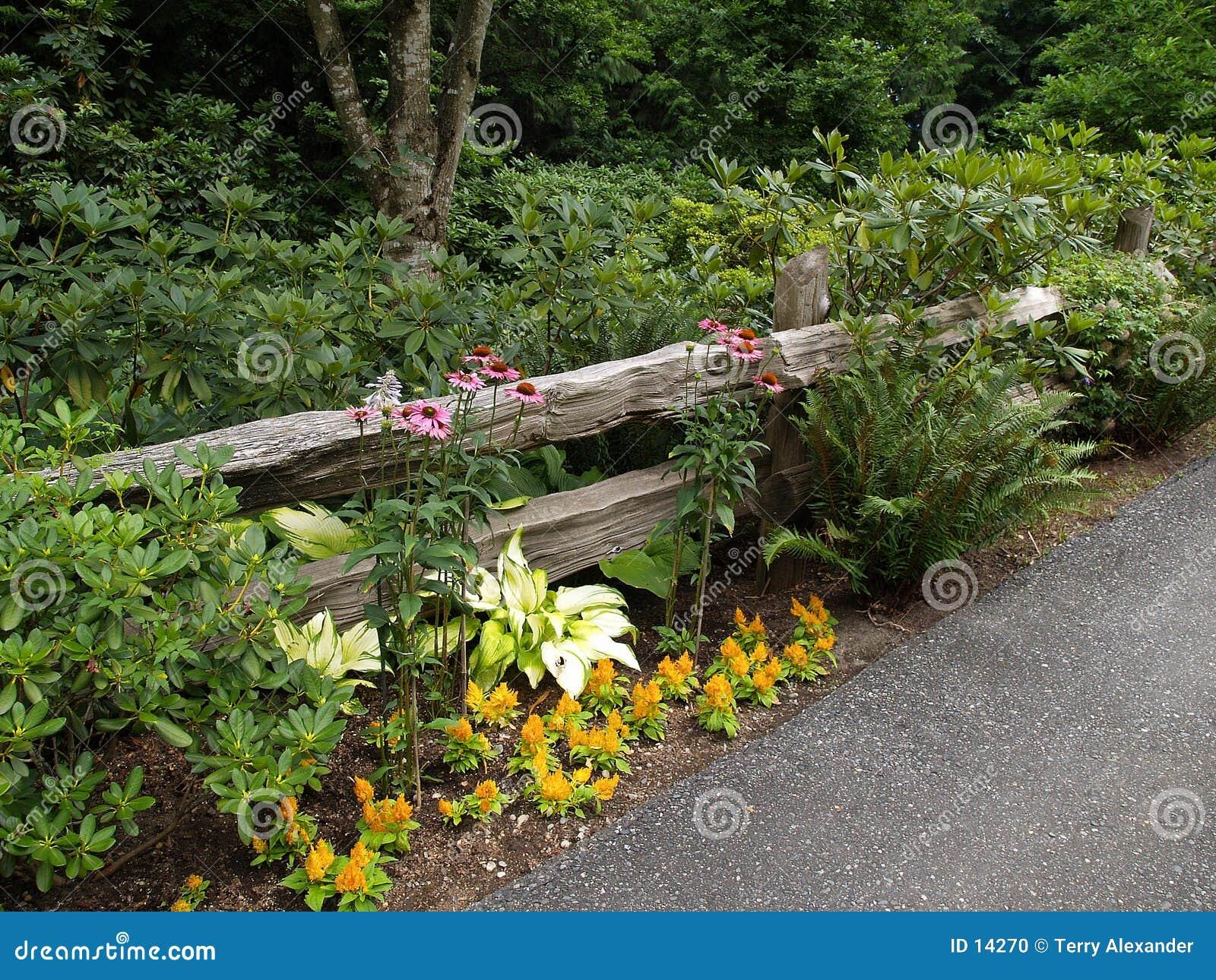 Gammal stång för staket