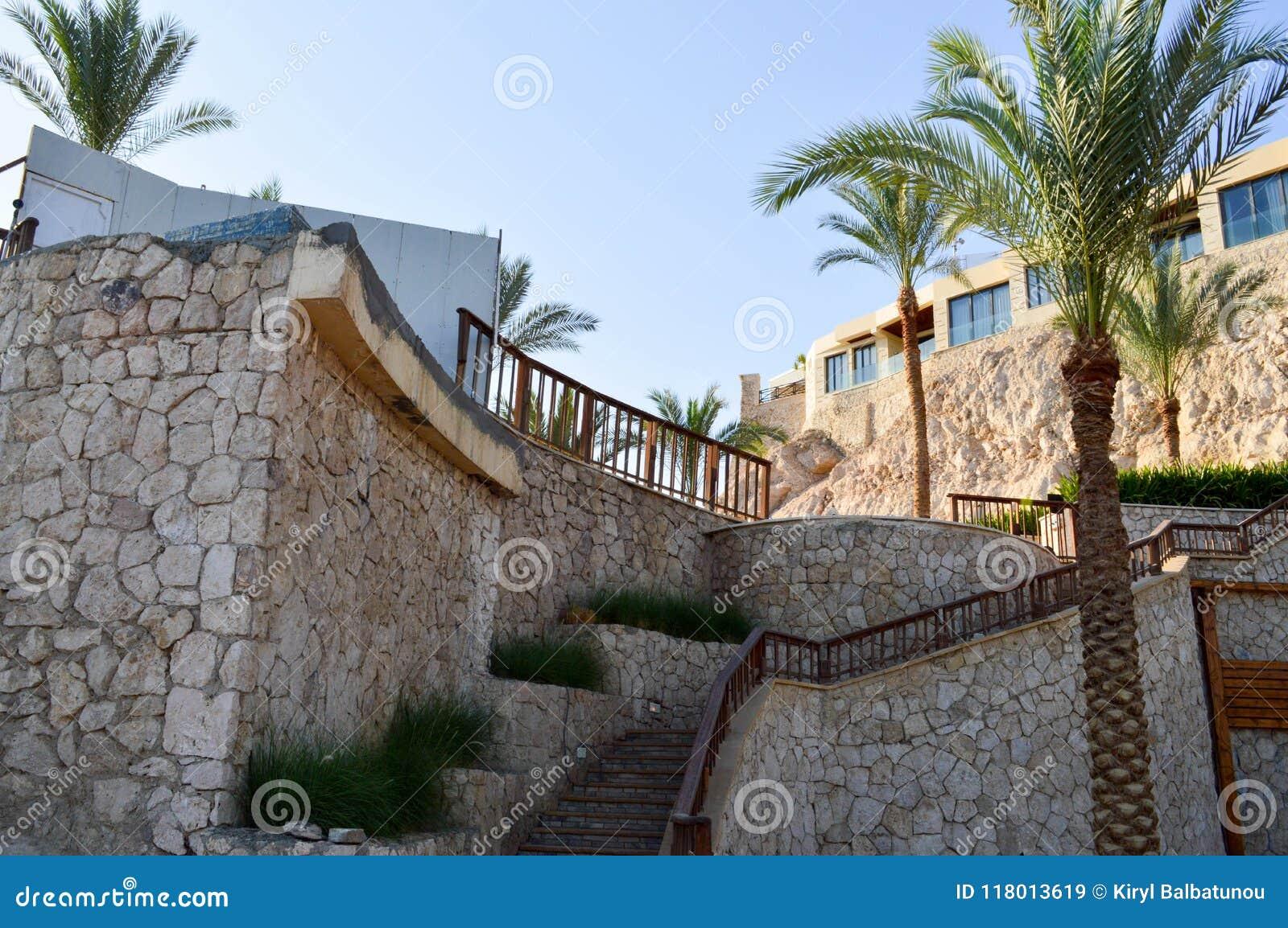 Gammal stor trappuppgång och härliga tropiska palmträd med gröna filialer mot bakgrunden av fönster och en brant sandig cli