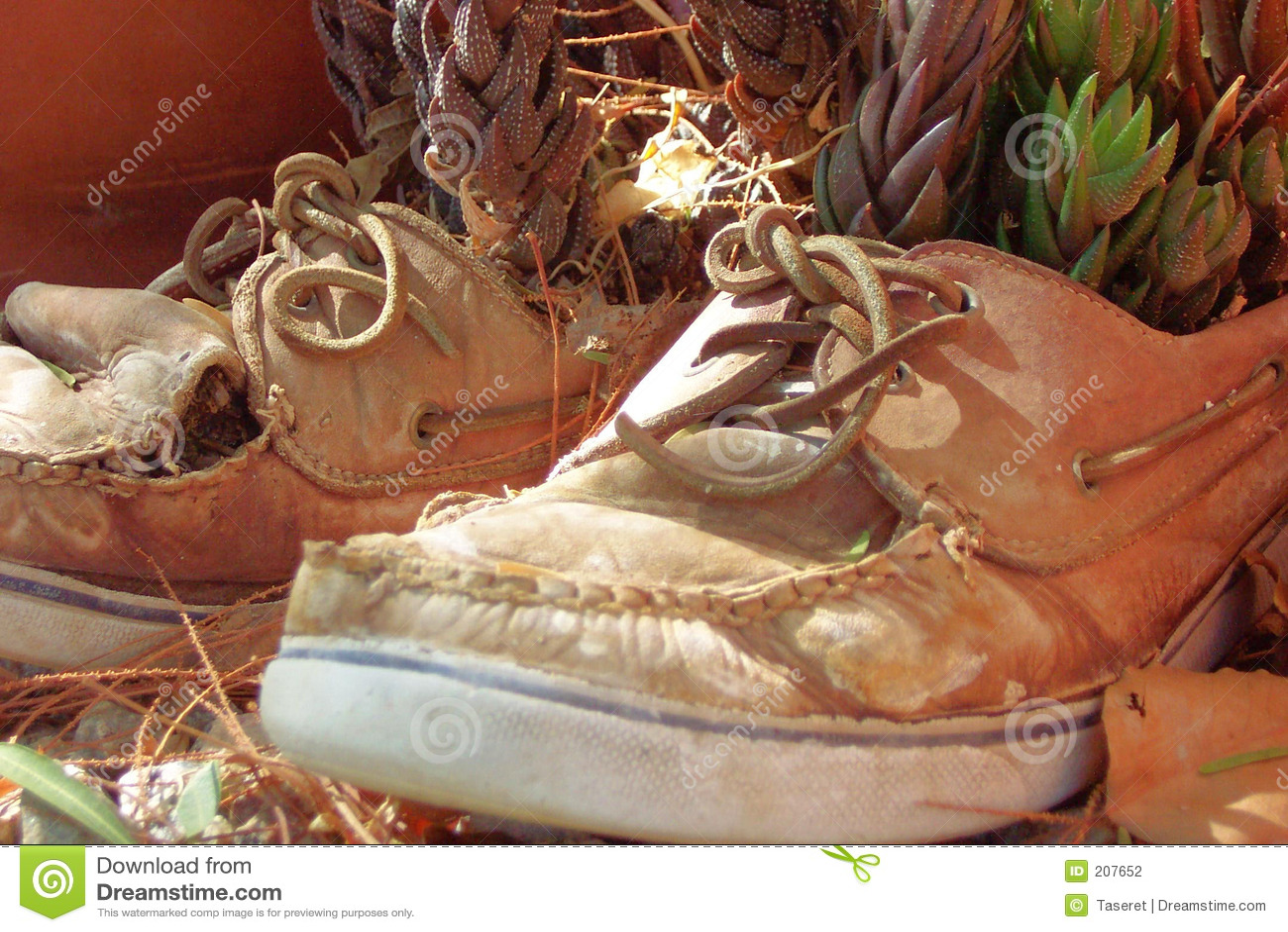 Gammala skor
