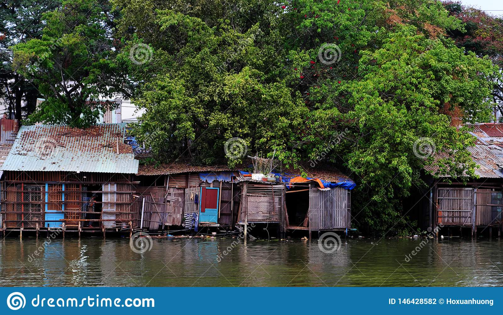 Gammalt lutninghus för flodstrand från det korrugerade metallarket under stort träd