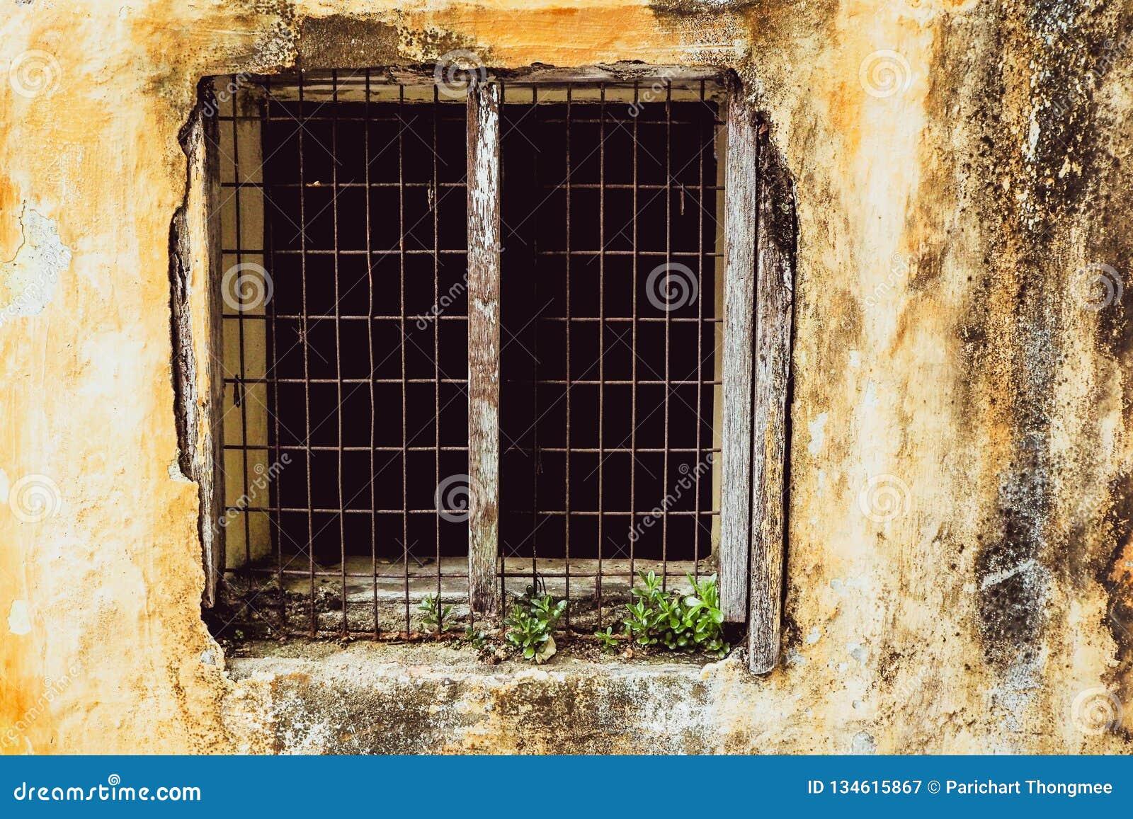 Gammalt tappningfönster av för modedesign för hus den gamla klassikern på gul lantlig målad betongväggbakgrund
