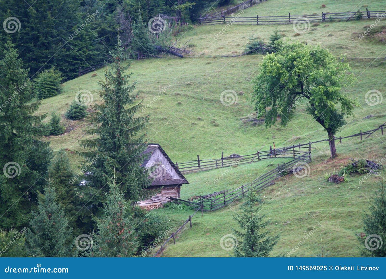 Gammalt trähus i bergen som omges av ett staket