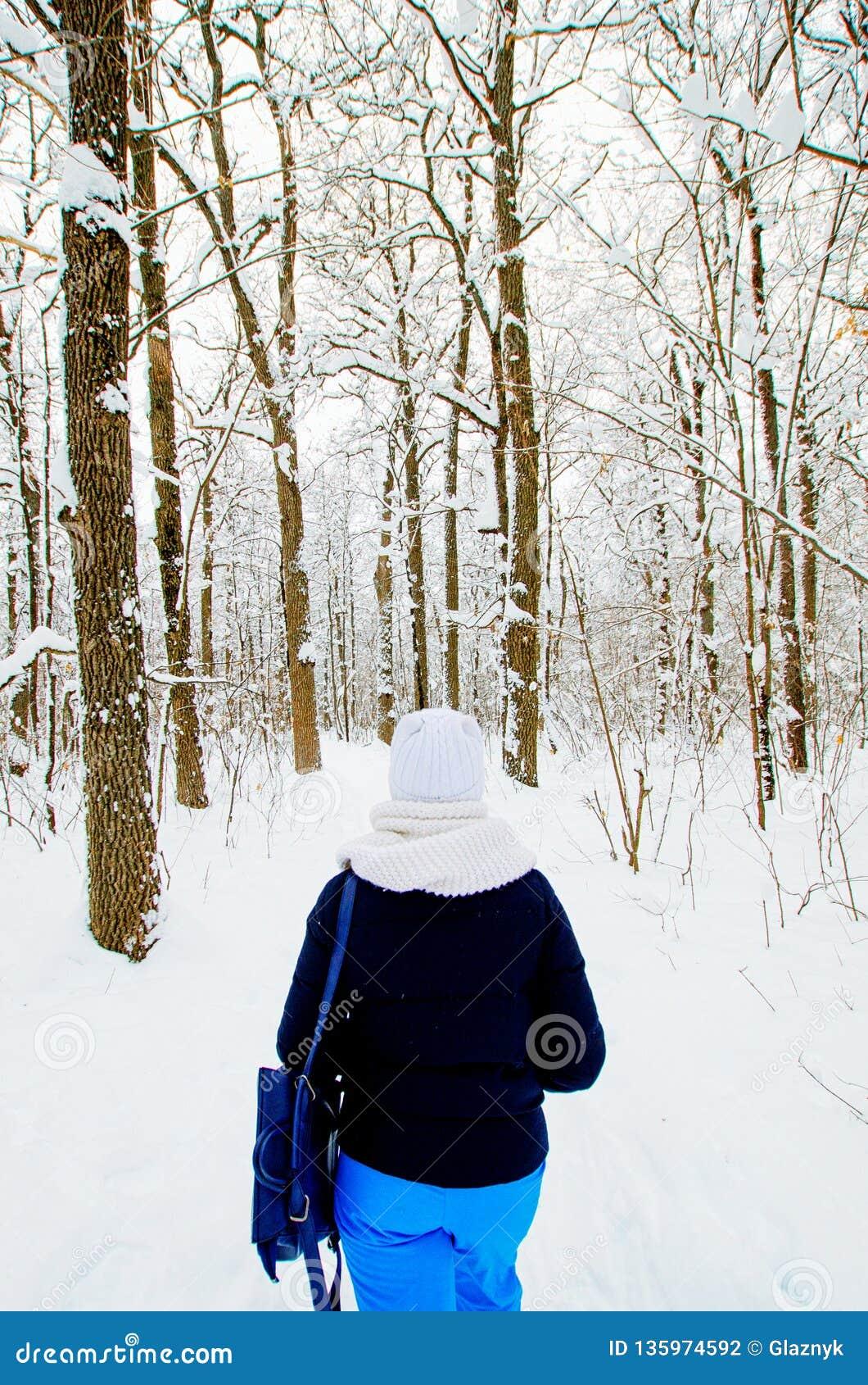 Gang in het de winterbos