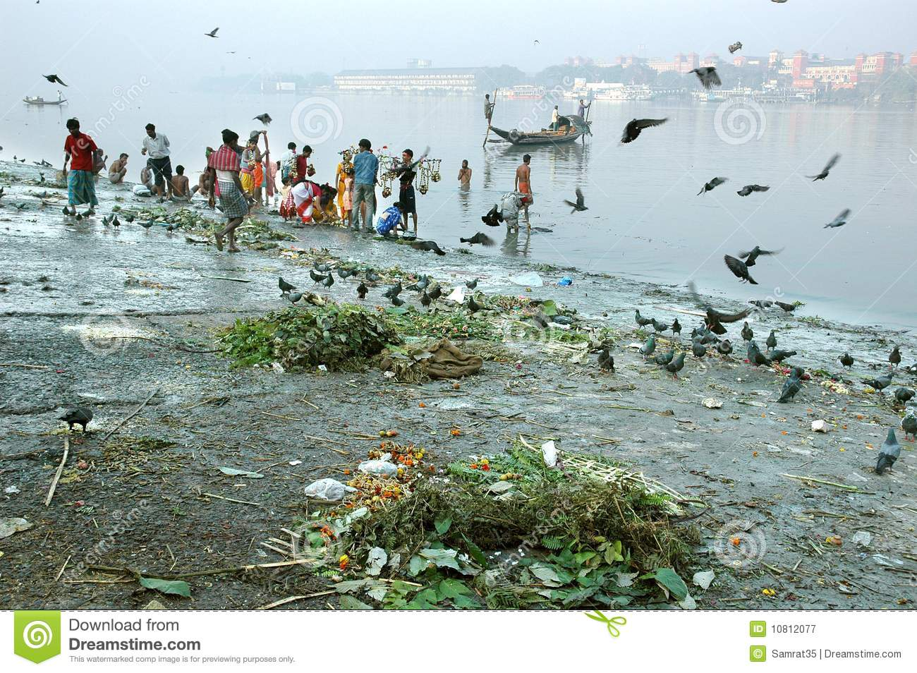 essay on river ganga pollution A survey recently conducted by the central pollution control board has shown that there are six major points on the 2500 km course of the ganga from gangotri to the.