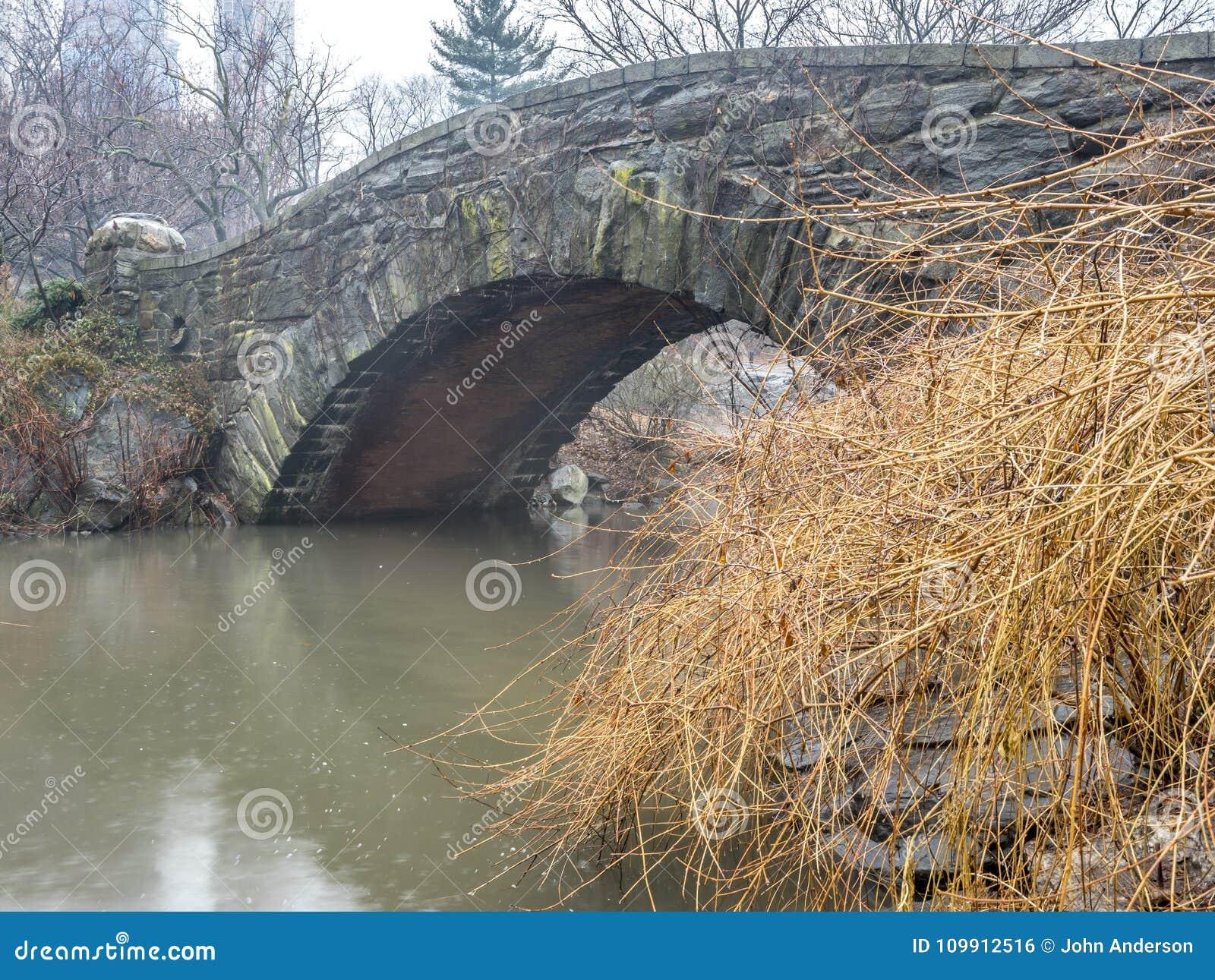 Gapstow桥梁中央公园,纽约