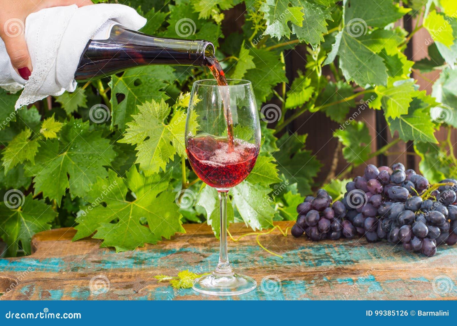 Garçom que derrama um vidro do vinho tinto, terraço exterior, tastin do vinho