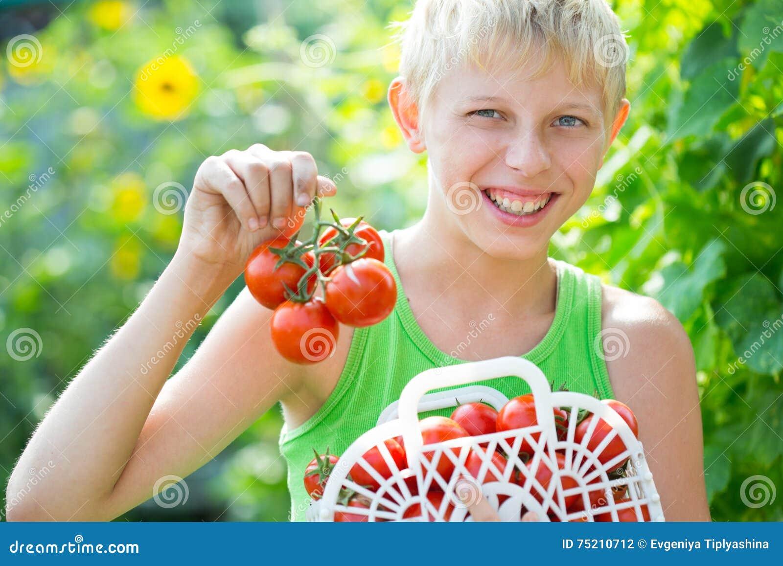 Garçon avec une culture des tomates