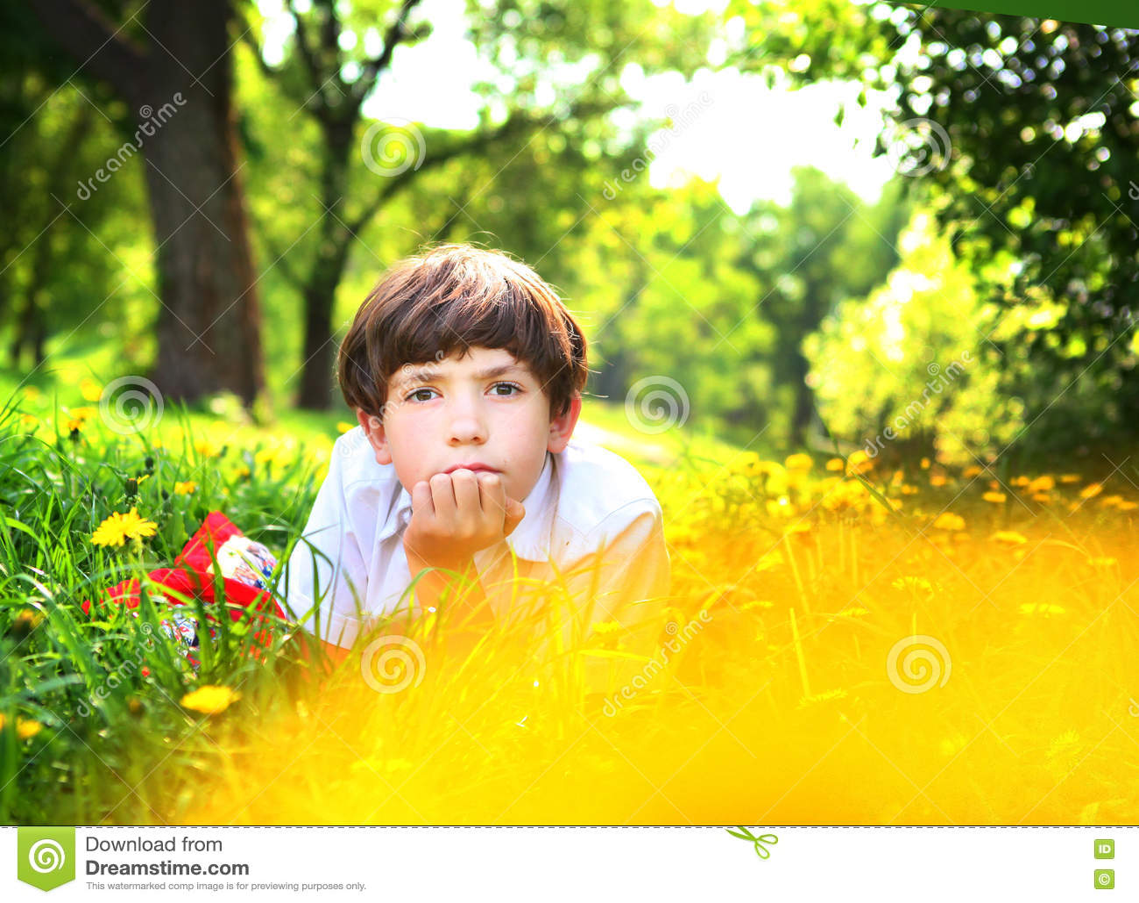 Garçon beau de la préadolescence en parc de dandellion