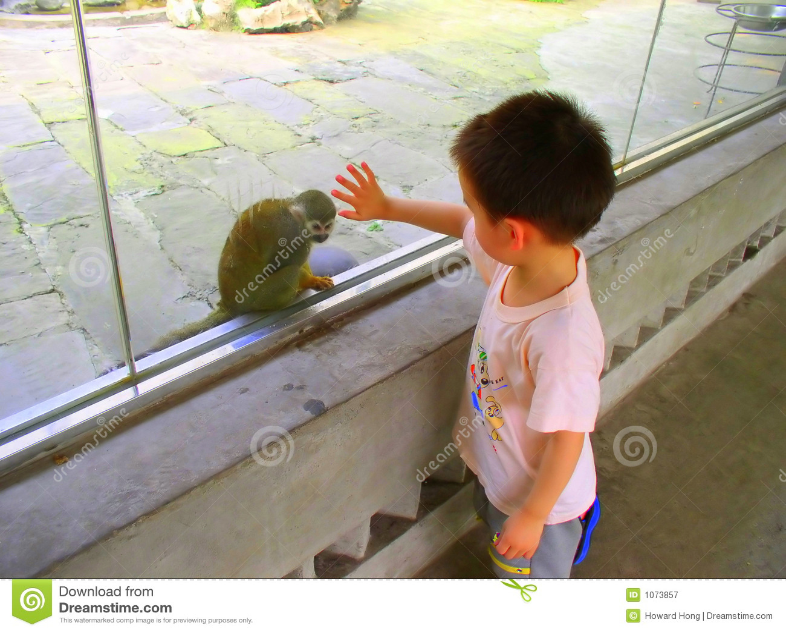 Garçon et singe