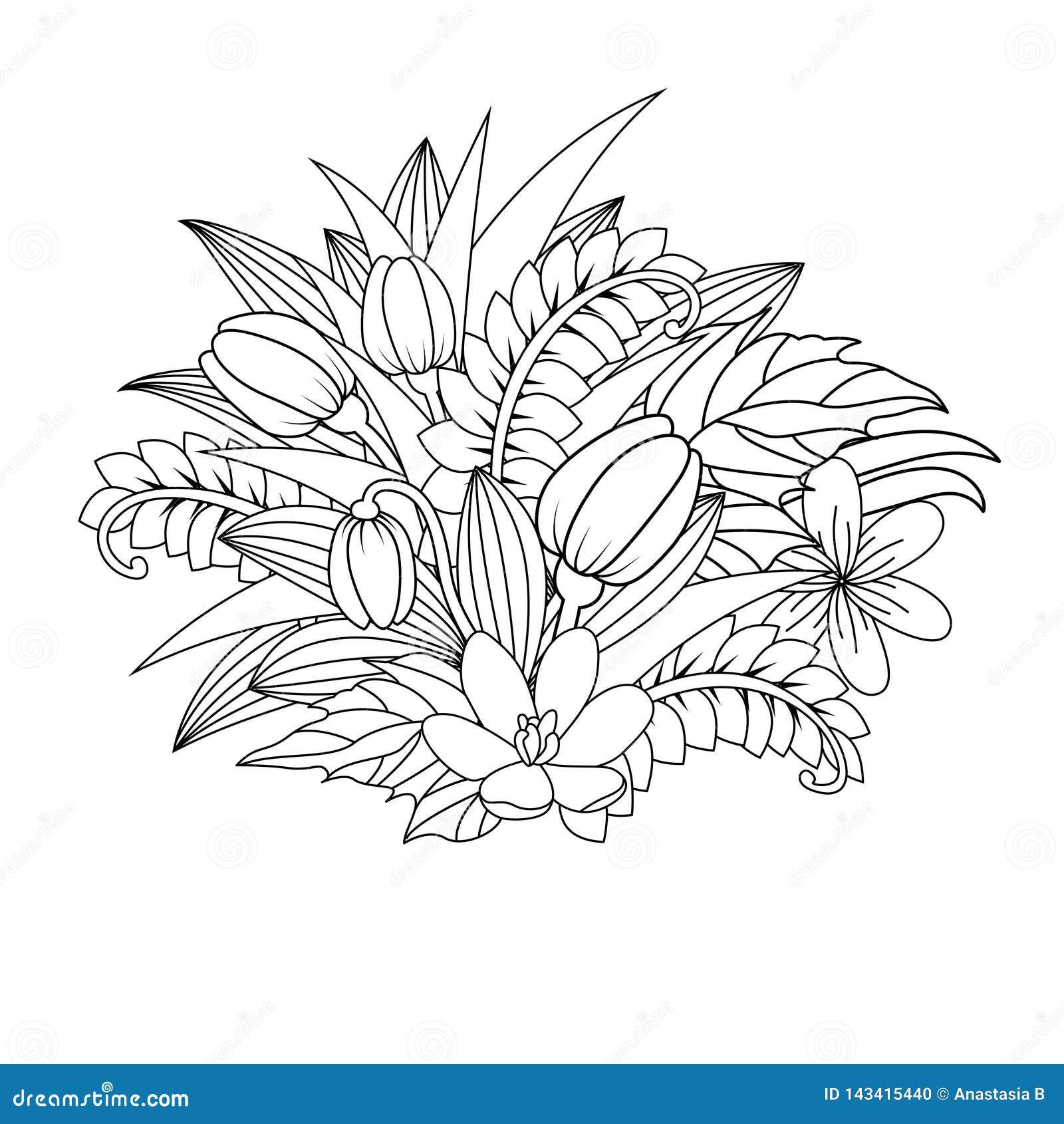 Garabato floral Zentangl del ejemplo del vector Ejercicios meditativos Tensi?n anti del libro de colorear