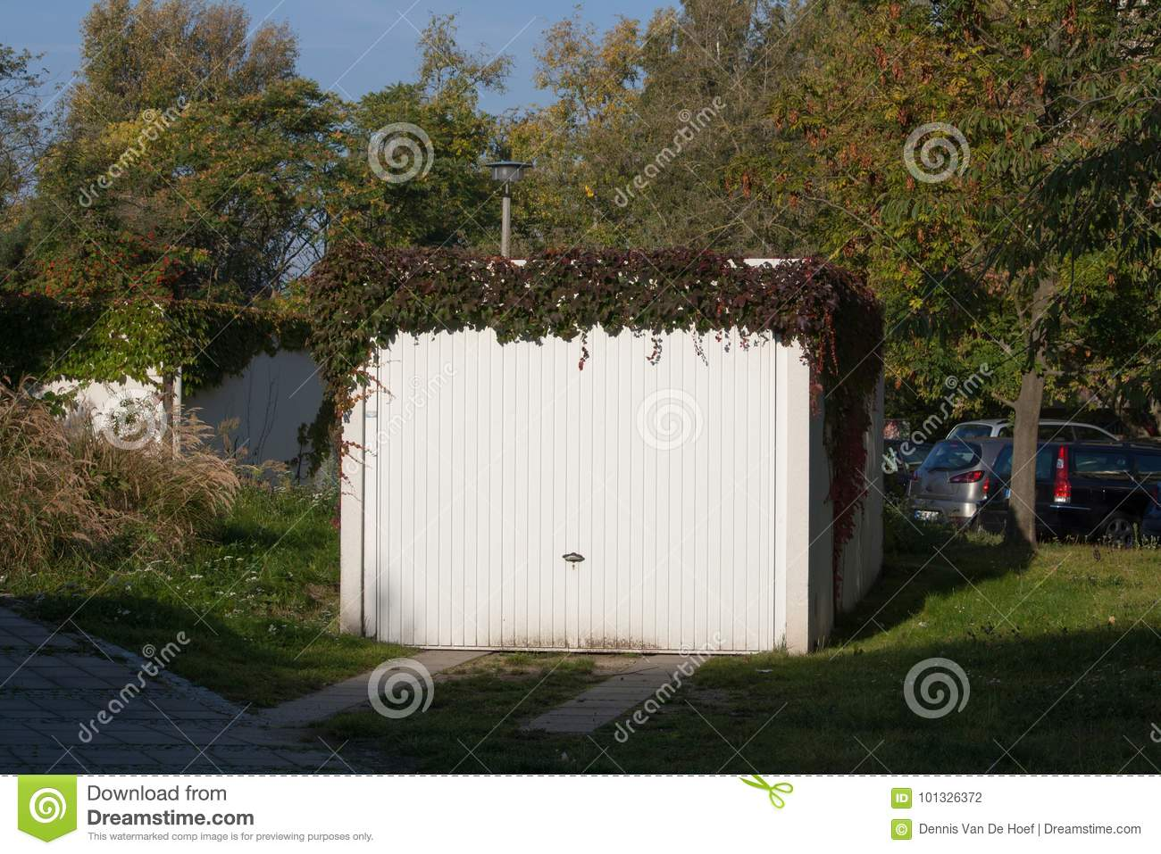 Garage with climbing plant.