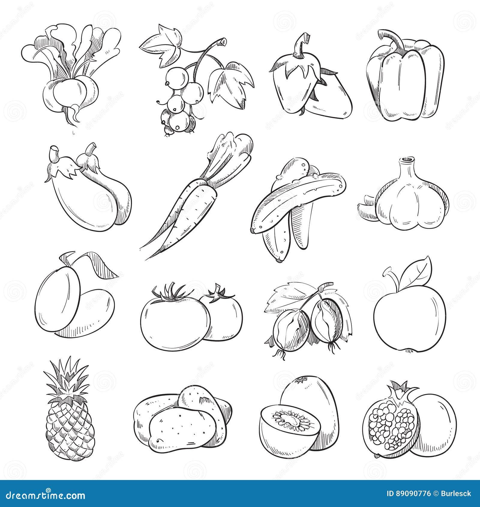 Garatujas dos vegetais e dos frutos, vegetariano do desenho da mão que cozinha ícones do alimento