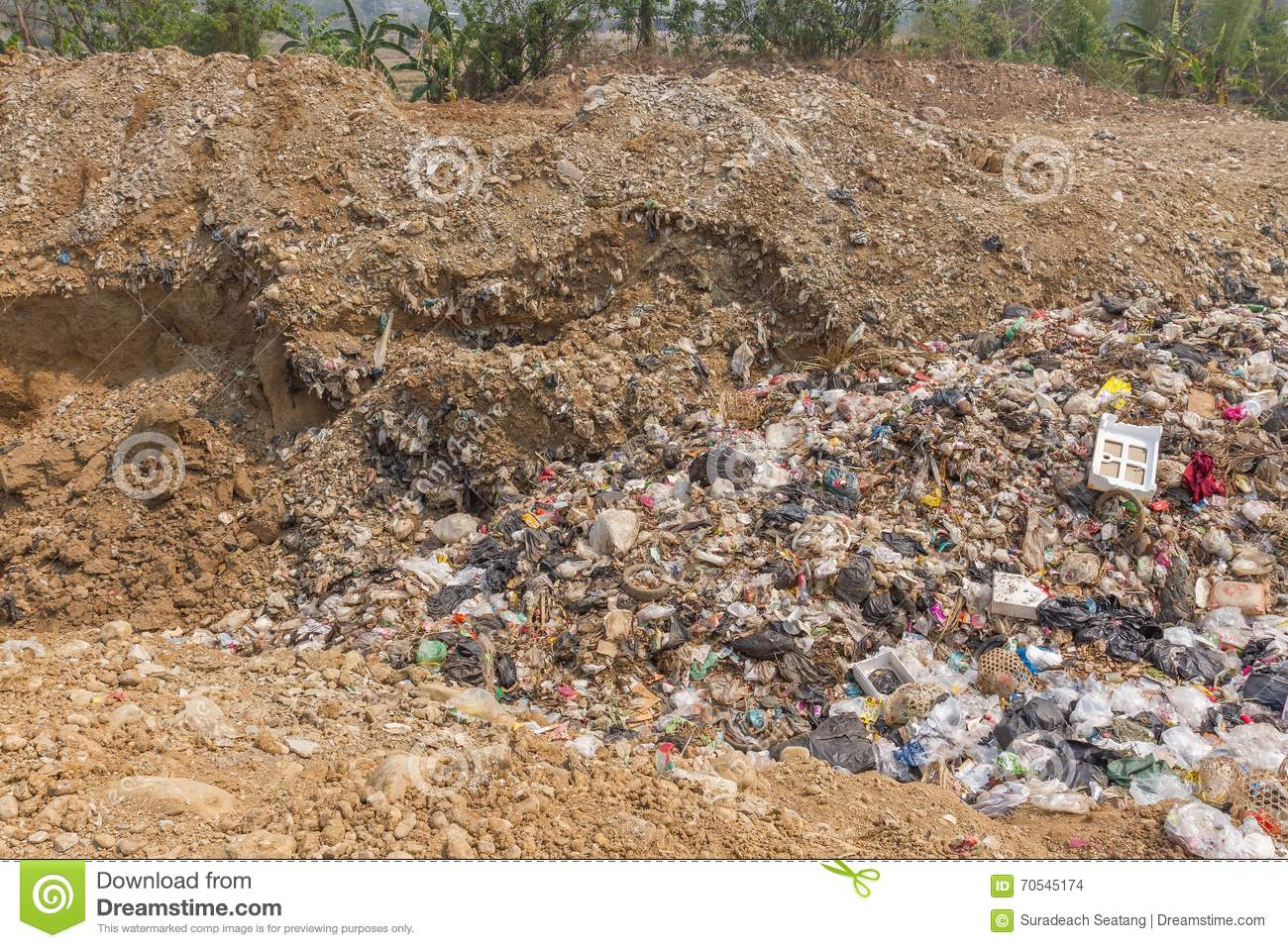the problem with garbage essay Abandoned piles of household garbage, bags of yard waste, appliances, old barrels, used tires, and demolition debris such as lumber alert adjoining property owners of the open dumping problem and enlist their help in a neighborhood watch program.