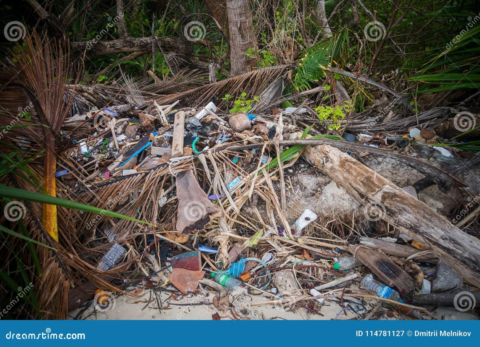 Garbage pile deposit Branches wood,
