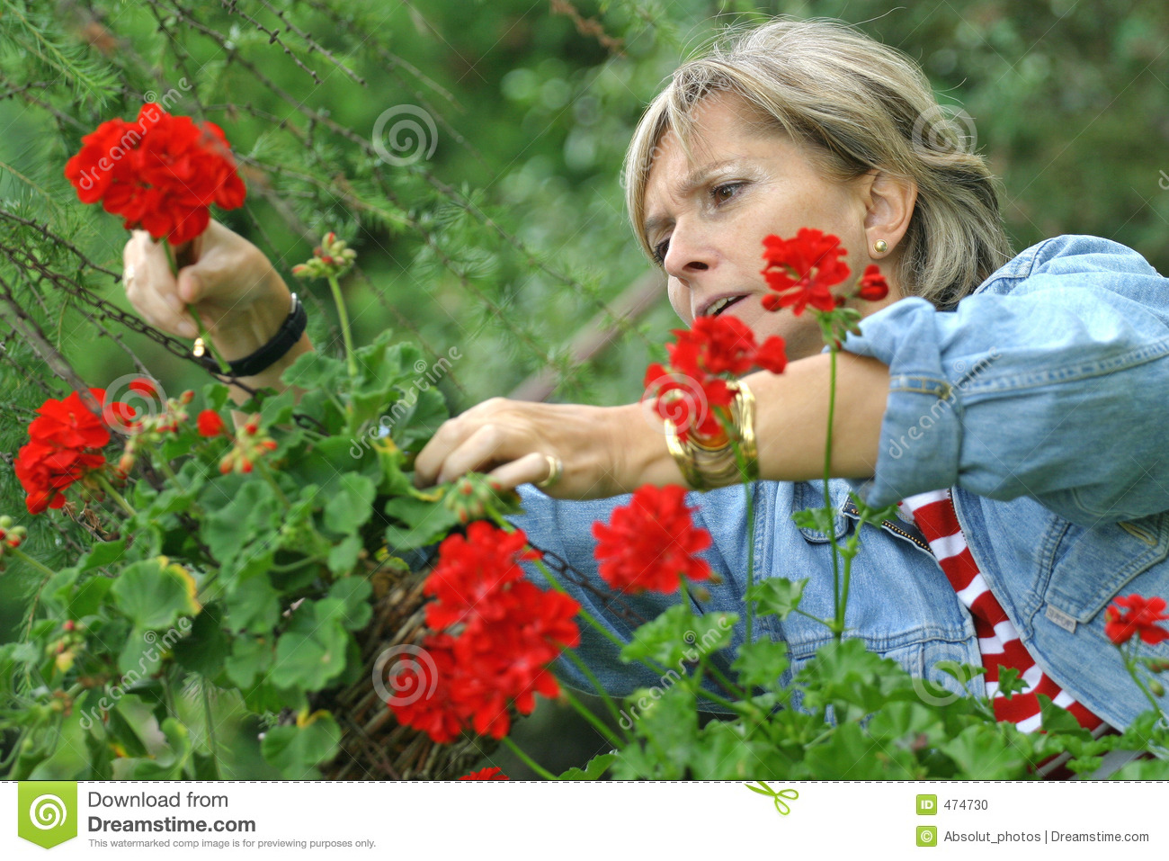 Download In the garden [2] stock photo. Image of leisure, cheerful - 474730