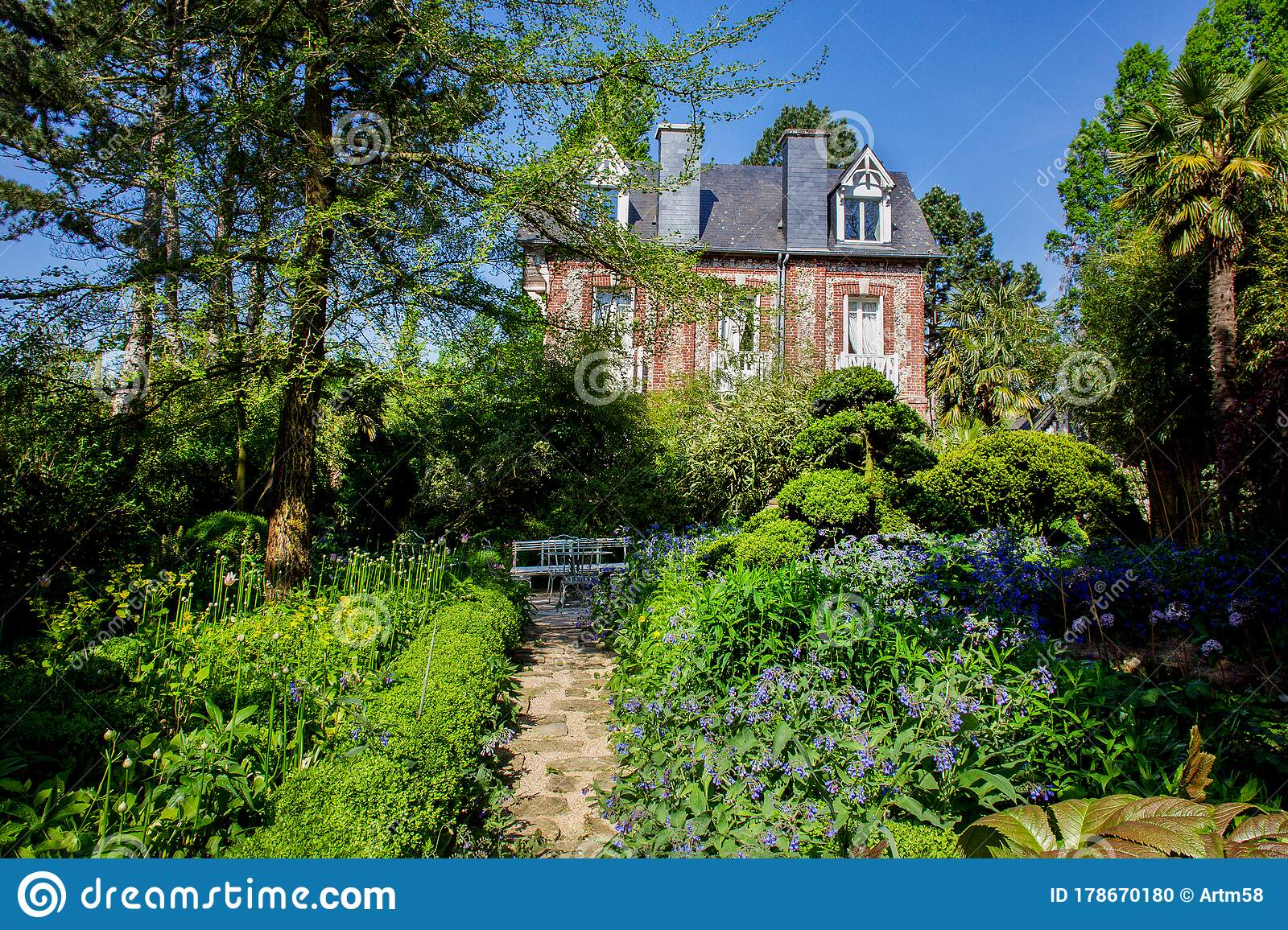 Garden Agapanthe In Normandy Country House And Gardennear It Editorial Image Image Of Scene Fantstic 178670180
