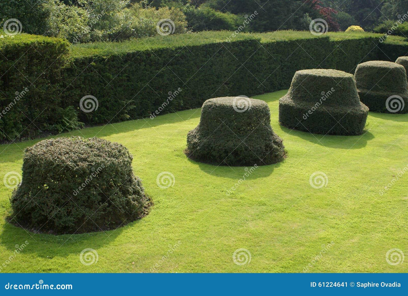 Garden Art. Garden Design. Topiary Trees Stock Image - Image of ...