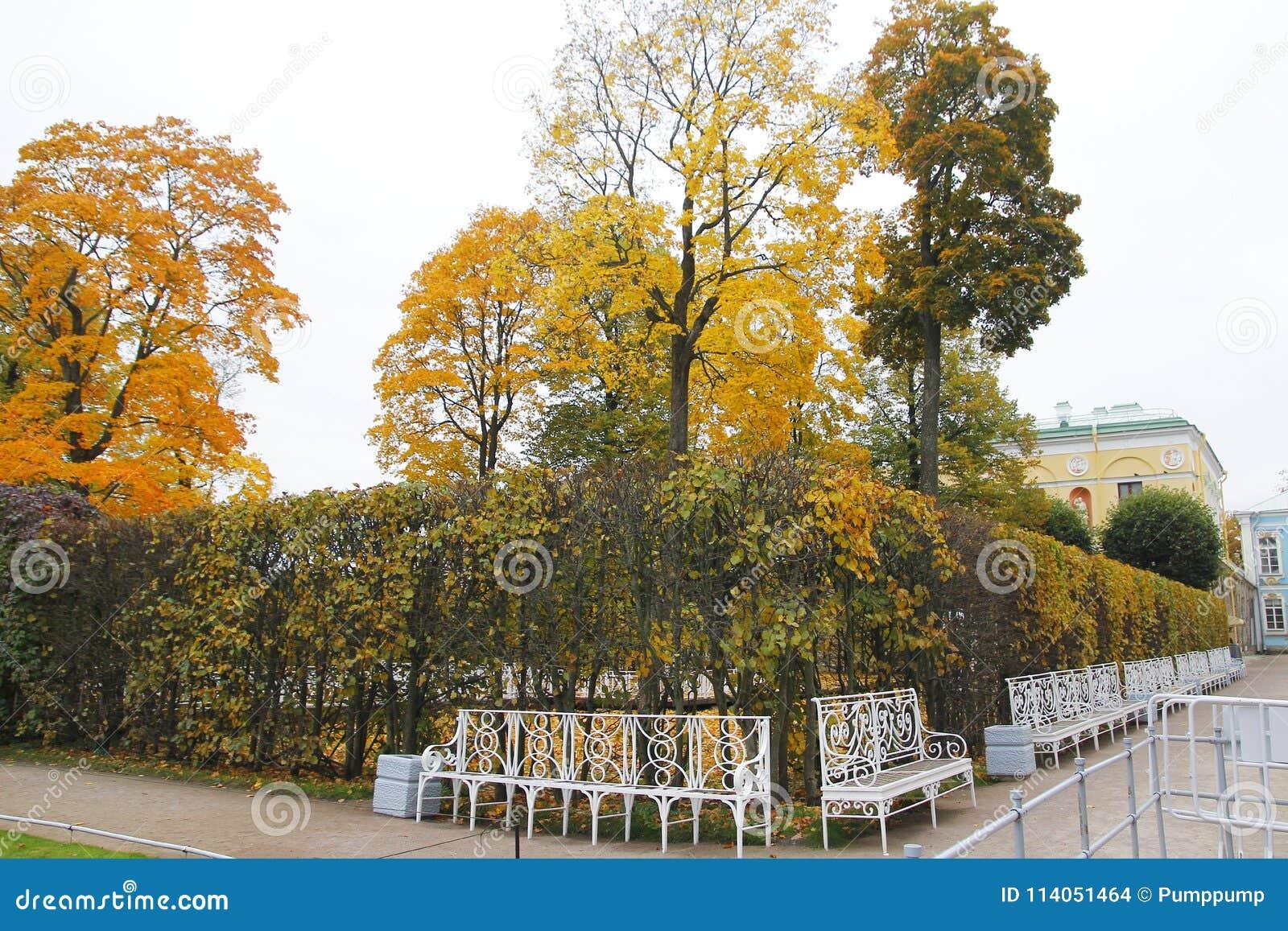 The Garden Autumn At Katherine& X27;s Palace Hall In Tsarskoe Selo ...