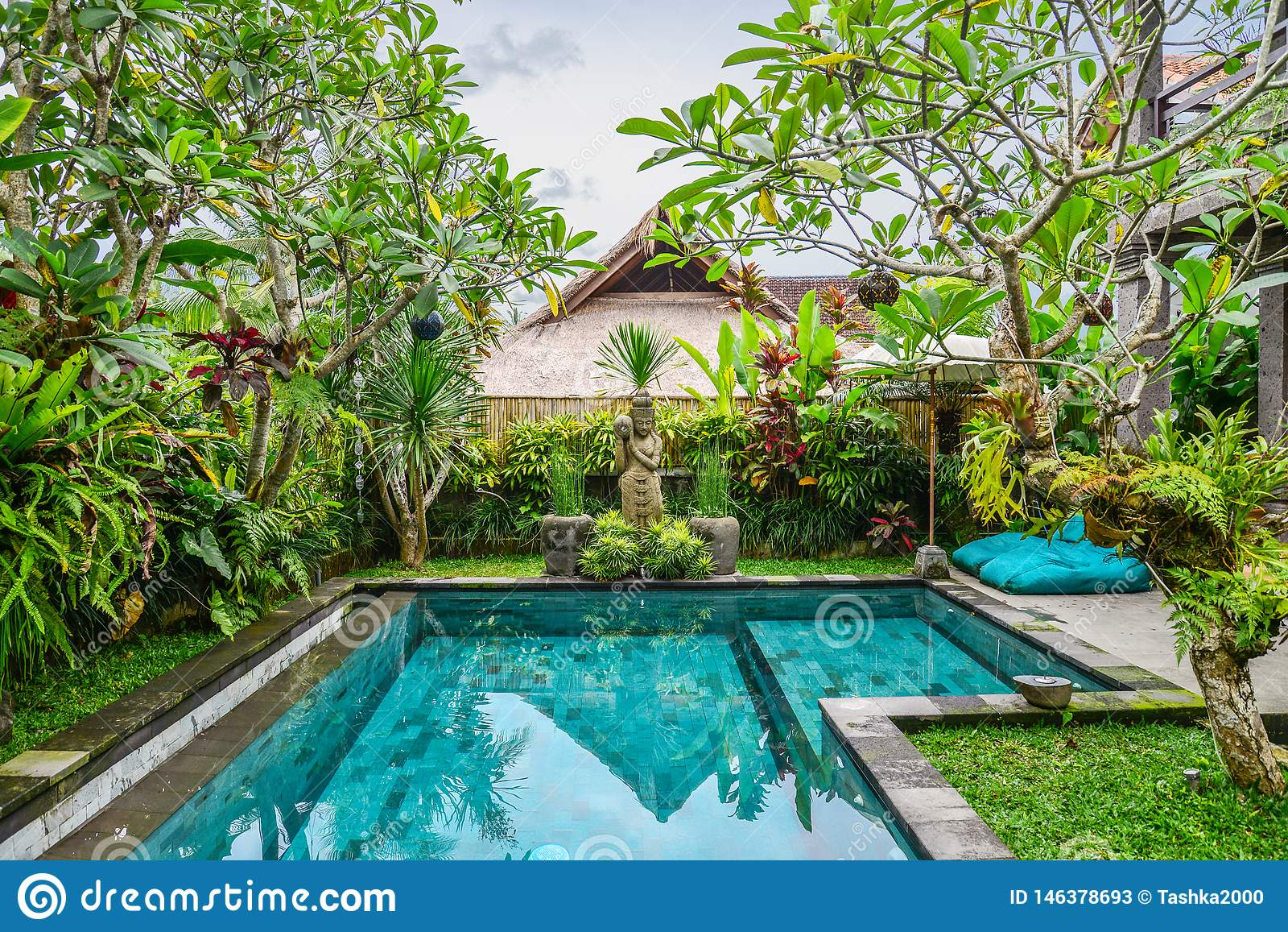 Garden With Swimming Pool garden on back yard with swimming pool stock image - image