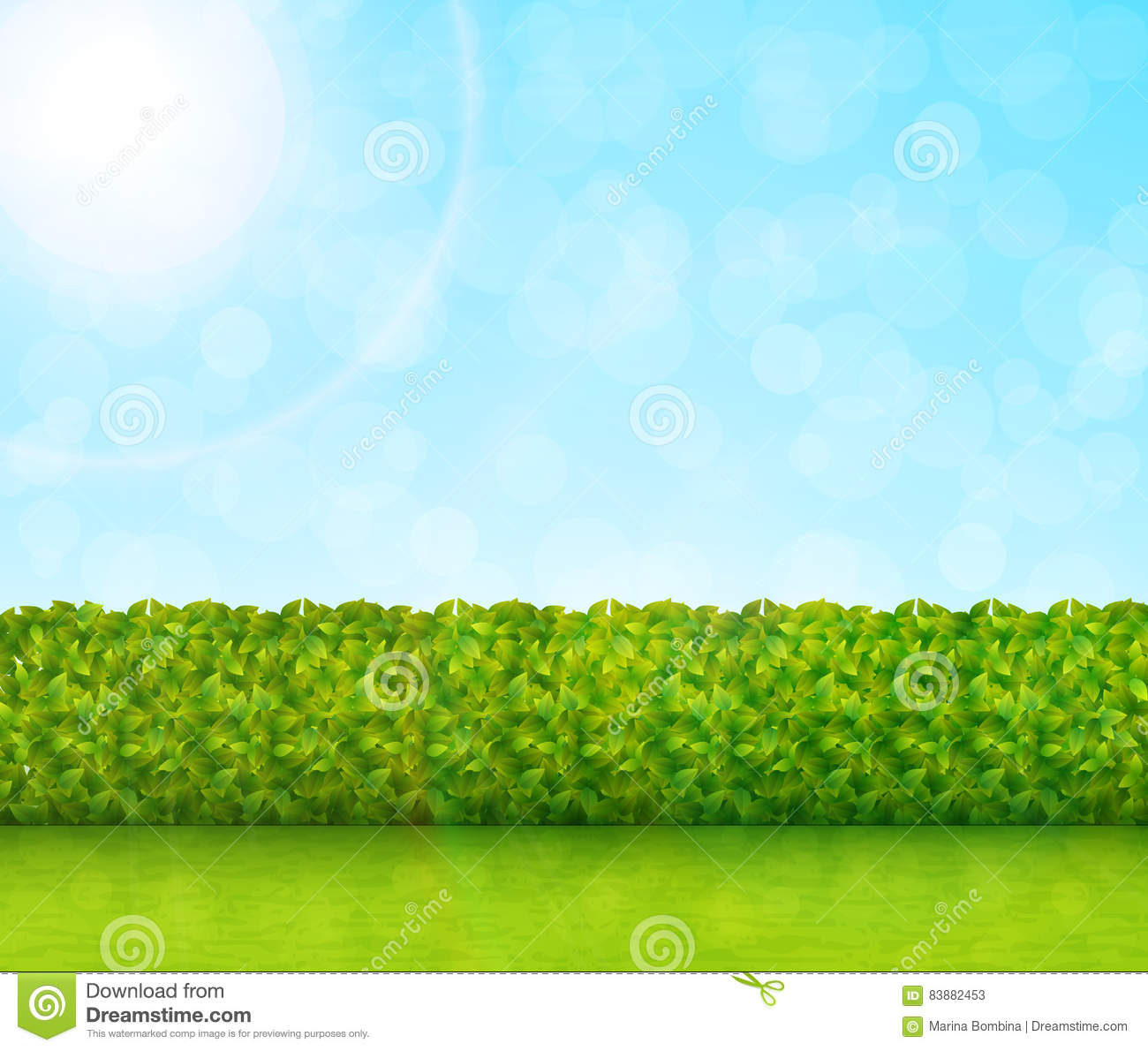 Garden Background With Grass Vector Stock Vector