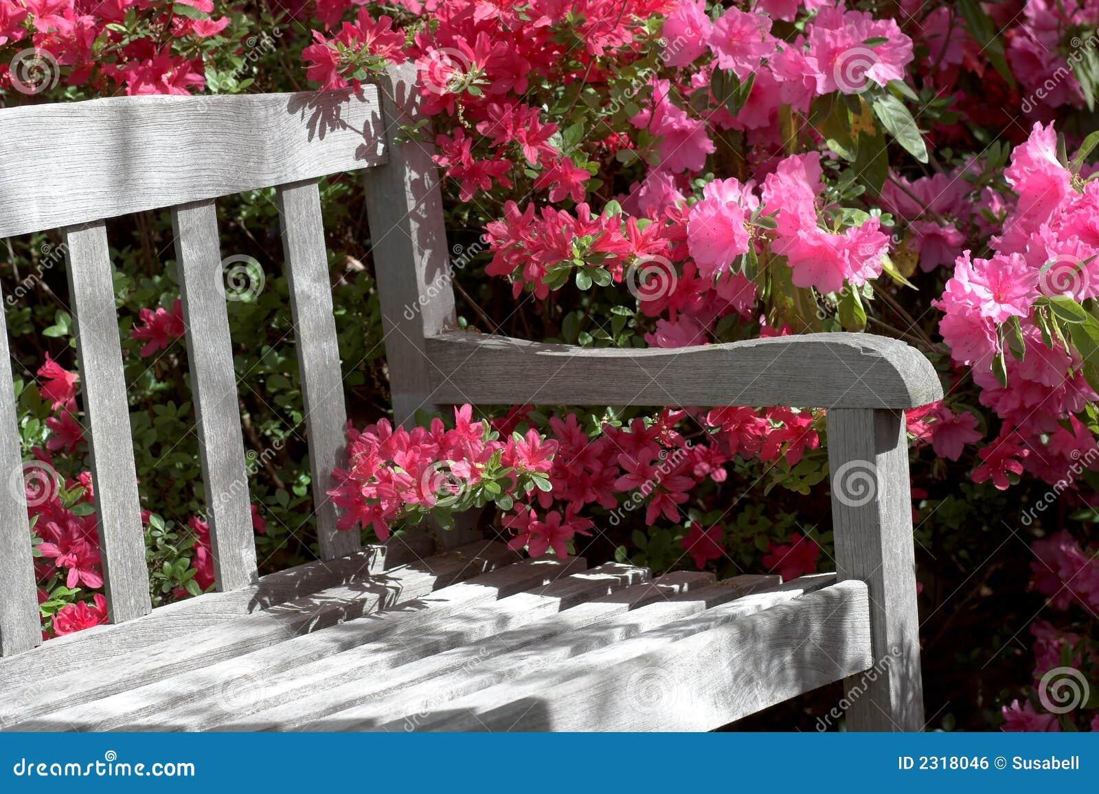 Garden Bench And Flowers Stock Photo Image Of Azalea