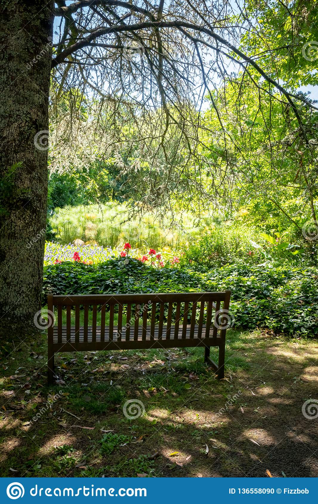 Heavy Duty Counter Stools, Garden Bench Overlooking A Garden In New Zealand Stock Photo Image Of Large Country 136558090