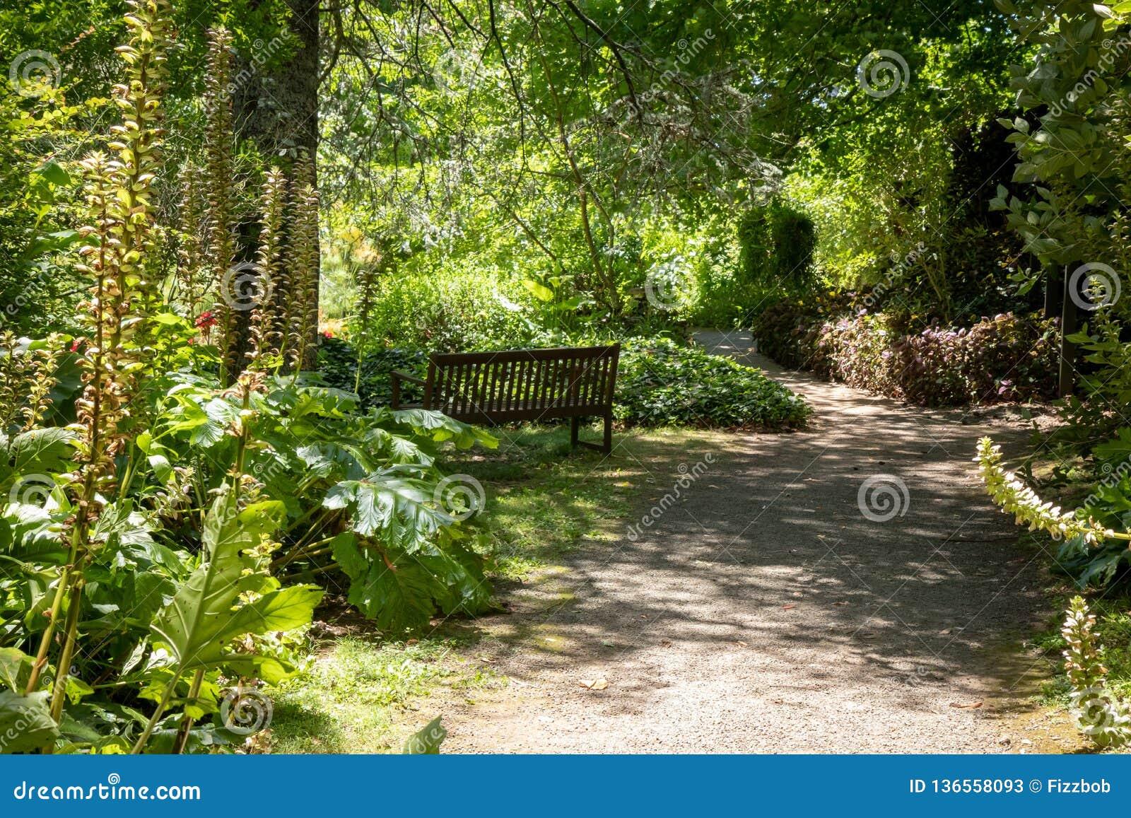 Heavy Duty Counter Stools, Garden Bench Overlooking A Garden In New Zealand Stock Image Image Of Nature Gardener 136558093