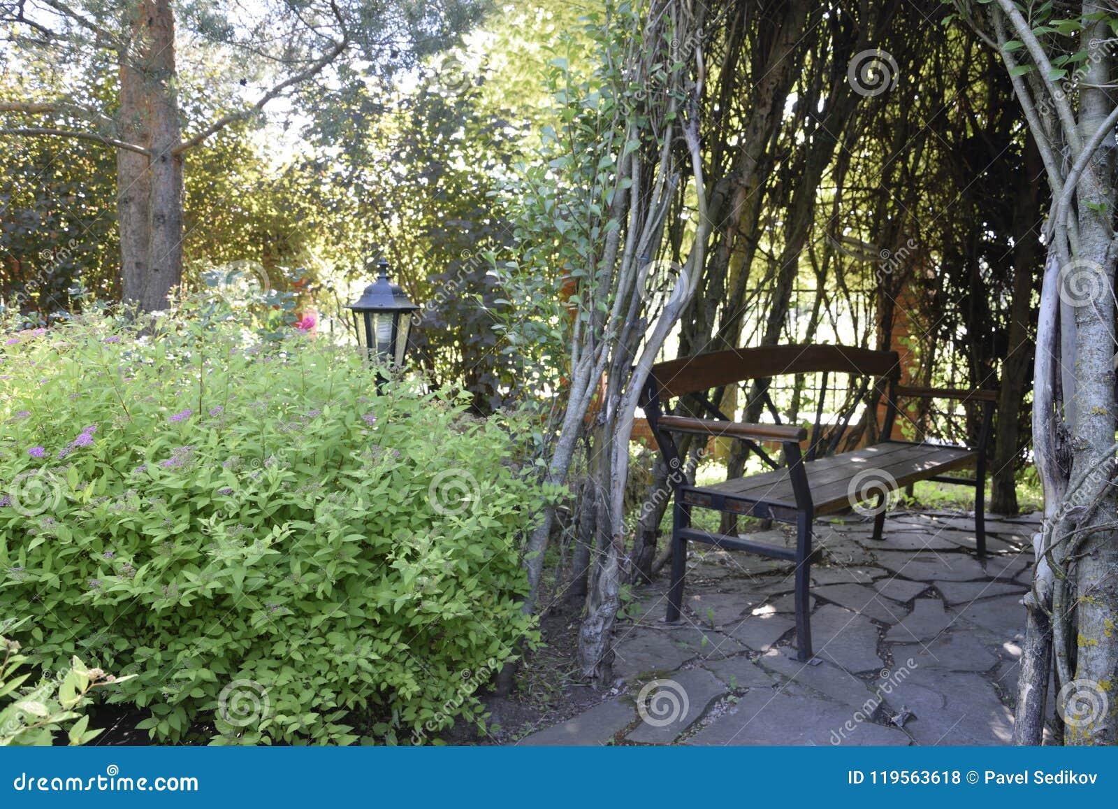 Heavy Duty Counter Stools, Garden Bench In The Shade Stock Photo Image Of Garden 119563618