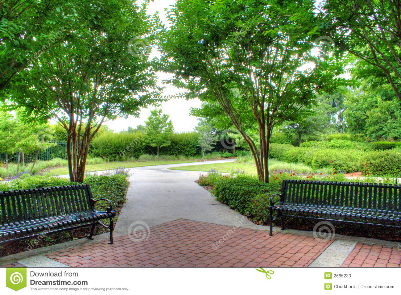 Garden Benches Stock Image Image Of Summer Shade Park