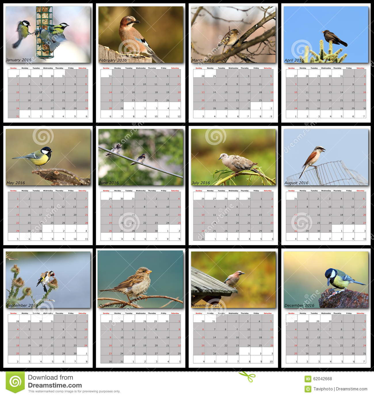 Garden birds calendar year 2016 stock photo image 62042668 for Gardening 2016 calendar