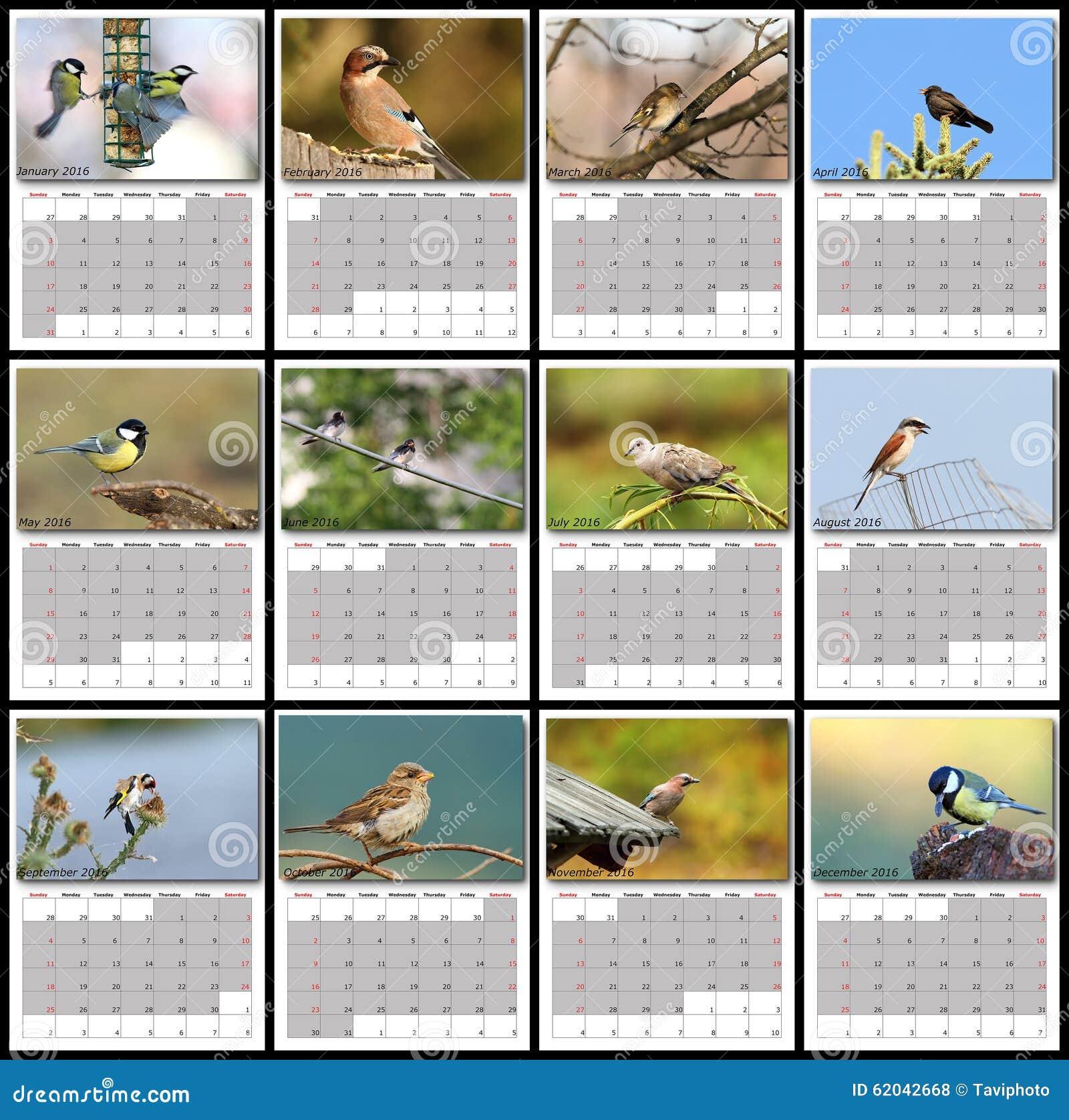 Garden birds calendar year 2016 stock photo image 62042668 for Gardening 2016 calendar