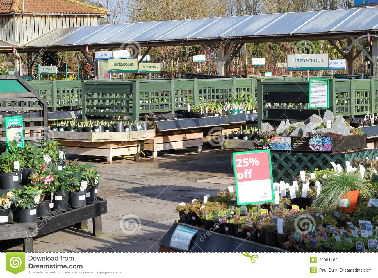 garden center plants for sale royalty free stock images