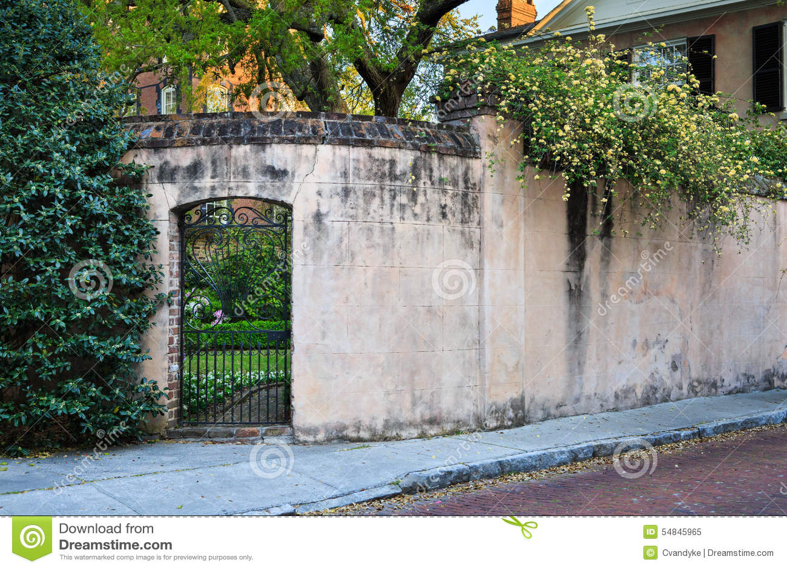 Garden Courtyard Wall Residential Lifestyle Charleston Sc