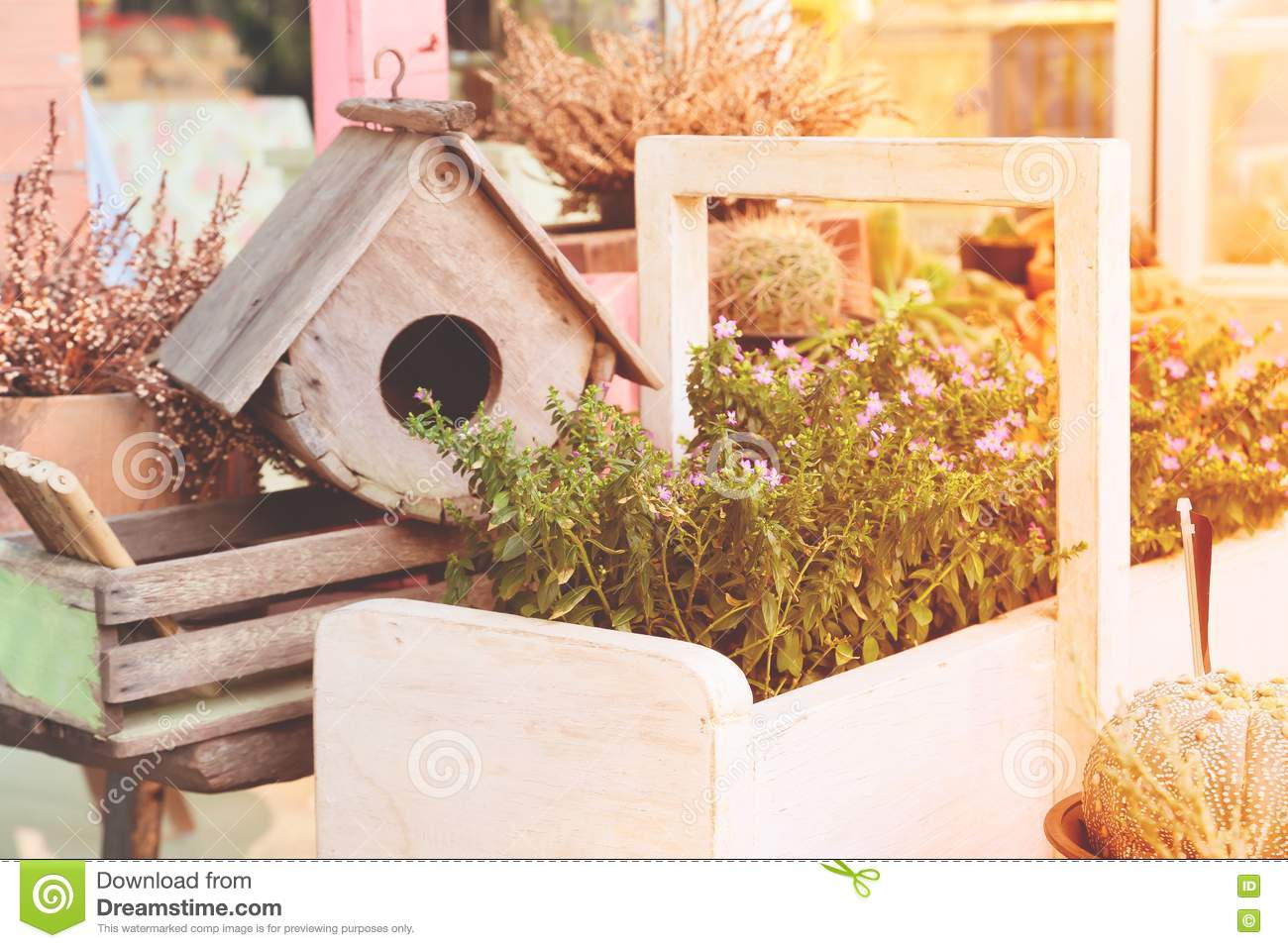 Garden Decoration With Bird House And Small Plants With Spring