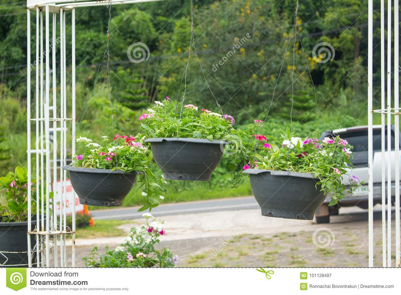Garden Designs With Hanging Flower Pot In High Season Or Winter Stock Image Image Of Front Gardening 101128497