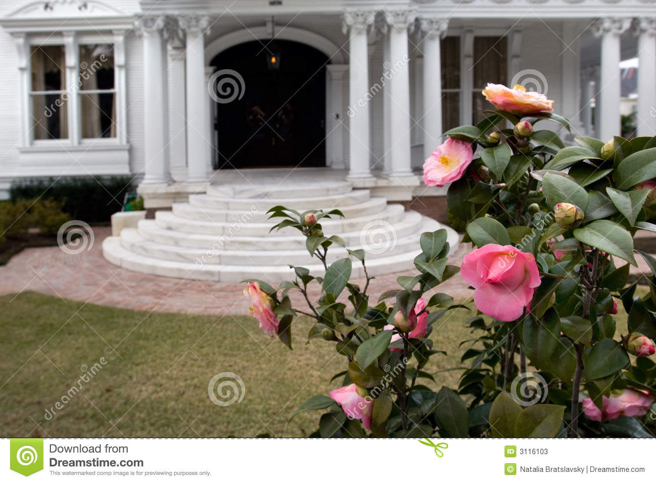 Garden District Stock Photos Image 3116103