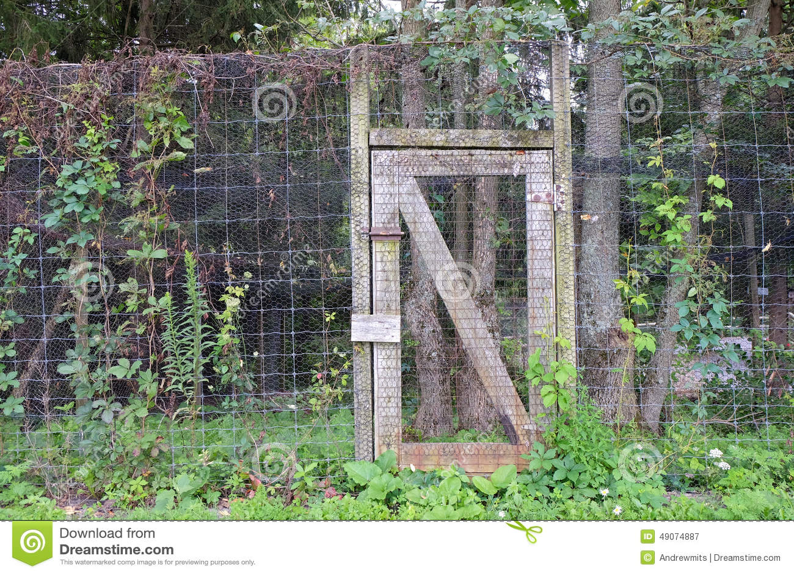 Garden Door stock image. Image of door, garden, chicken - 49074887
