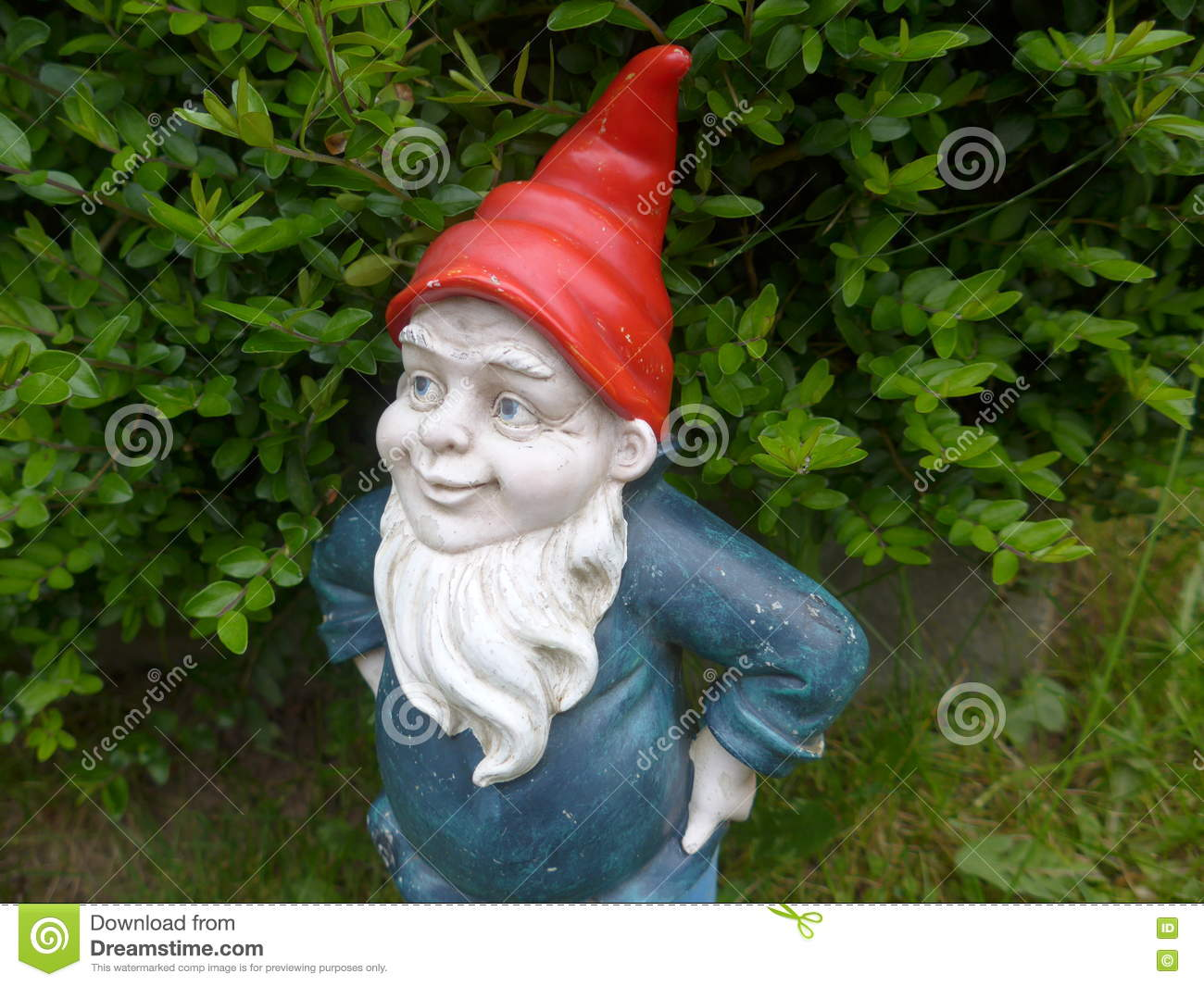 4ed8d546785 Garden Dwarf With Beard And A Red Hat Stock Photo - Image of ...